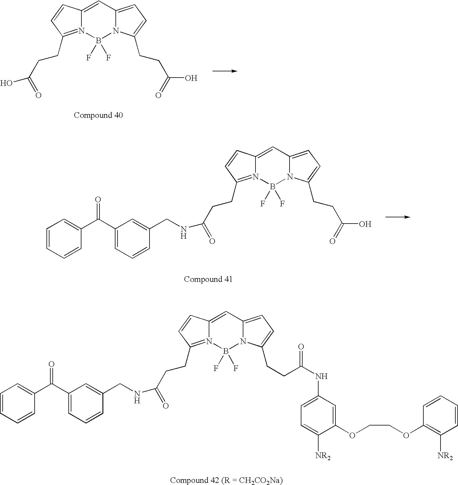 Figure US07776533-20100817-C00039