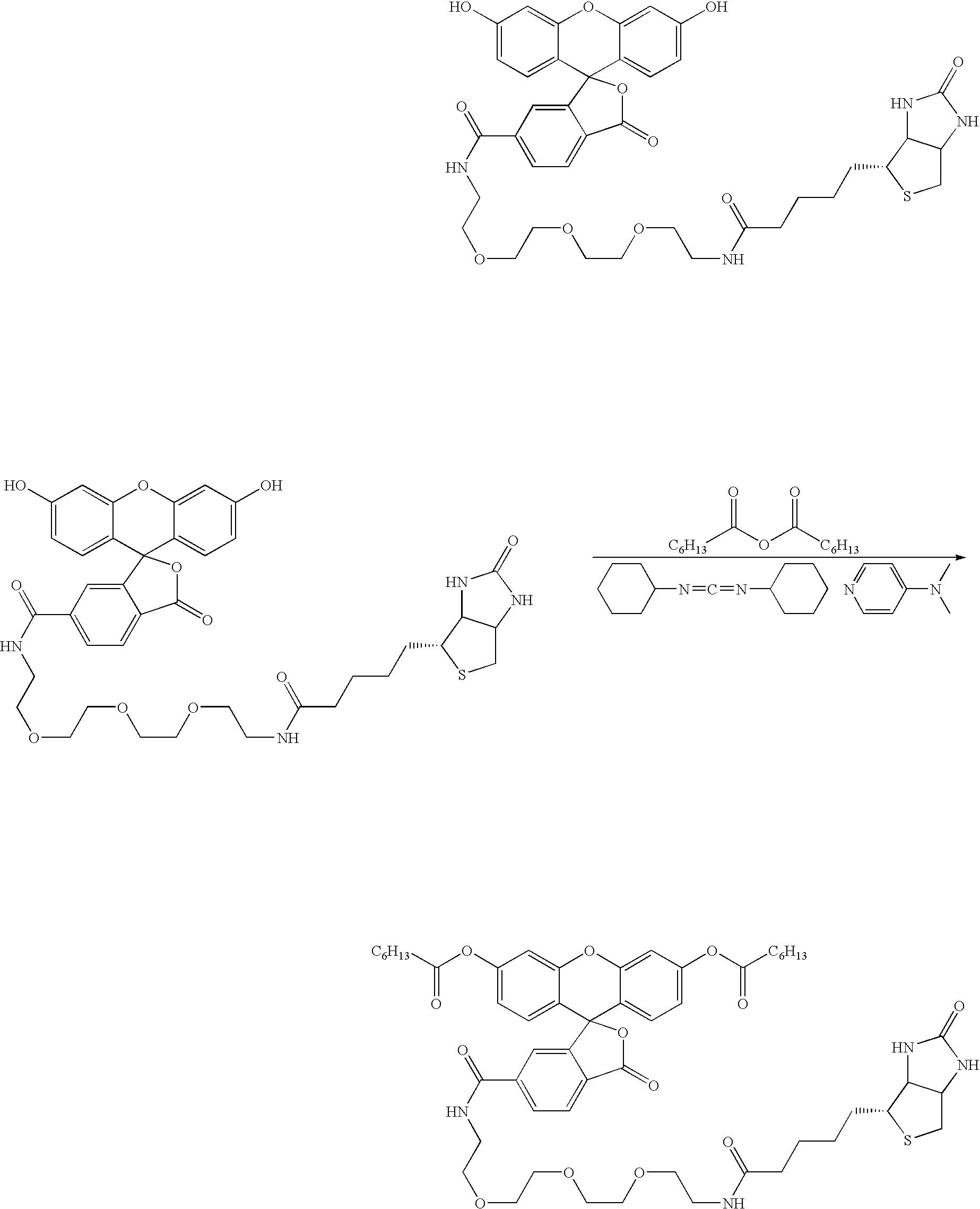 Figure US20040241759A1-20041202-C00002