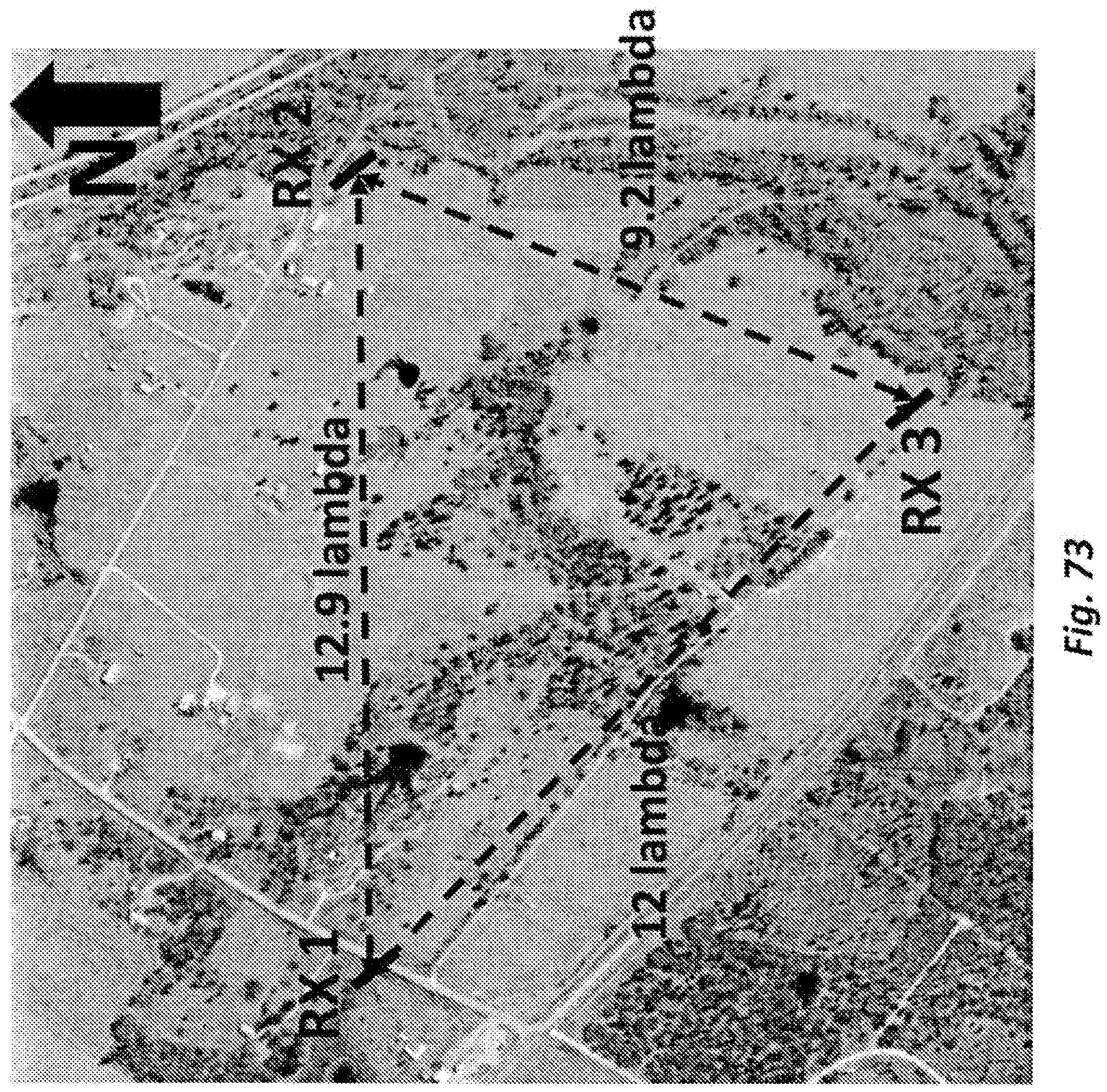Figure imgf000385_0001
