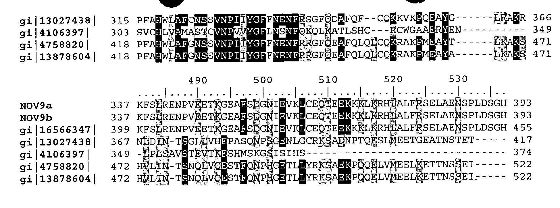Figure US20040033493A1-20040219-P00024