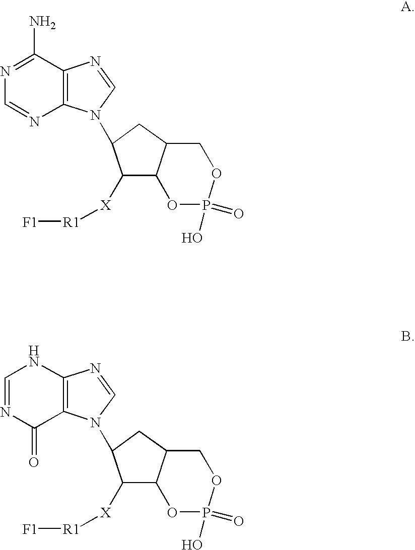 Figure US20040203000A1-20041014-C00001
