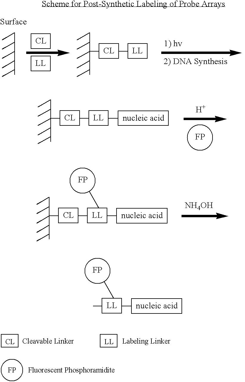 Figure US07026114-20060411-C00009