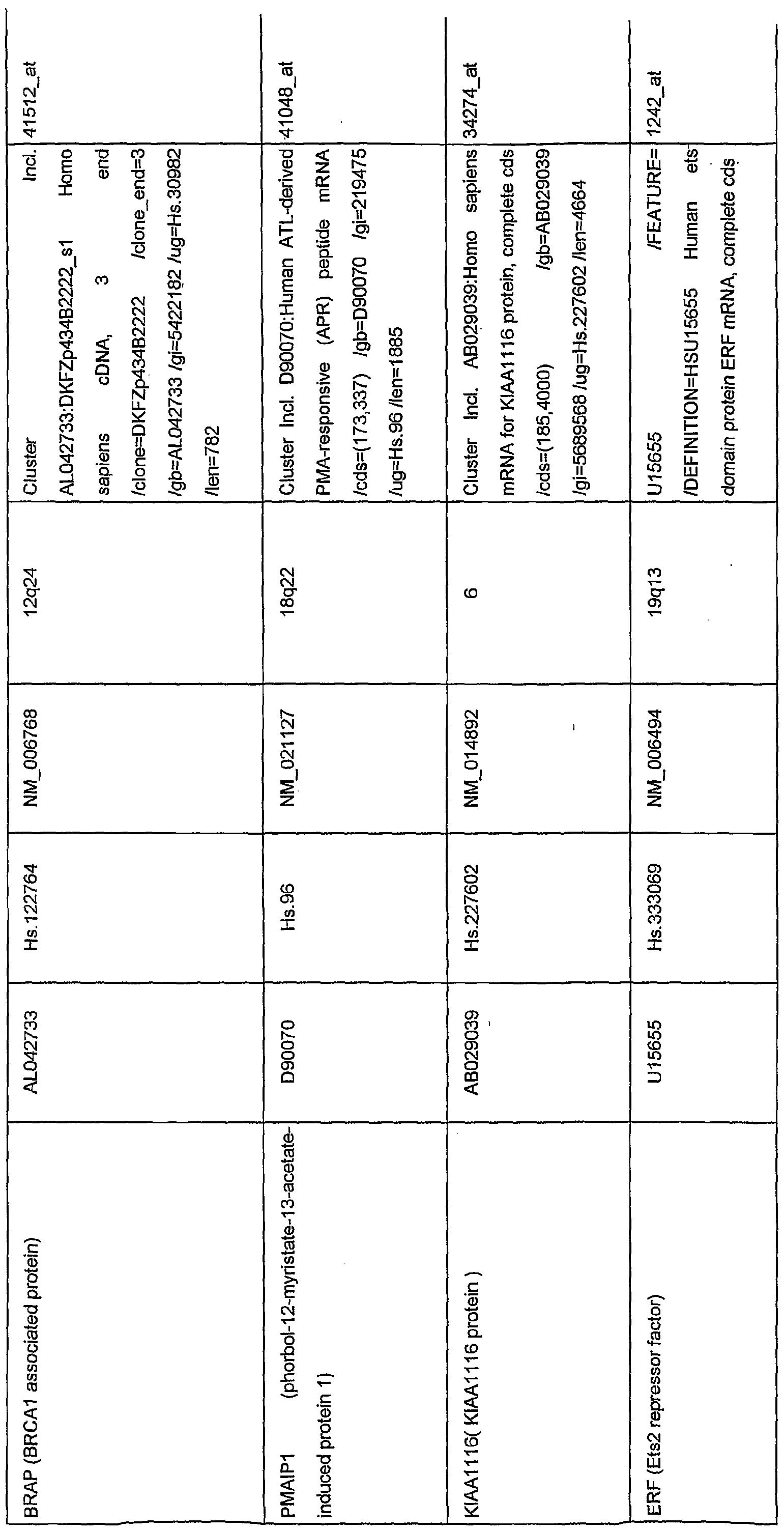 Brap Protocol In Networking Pdf