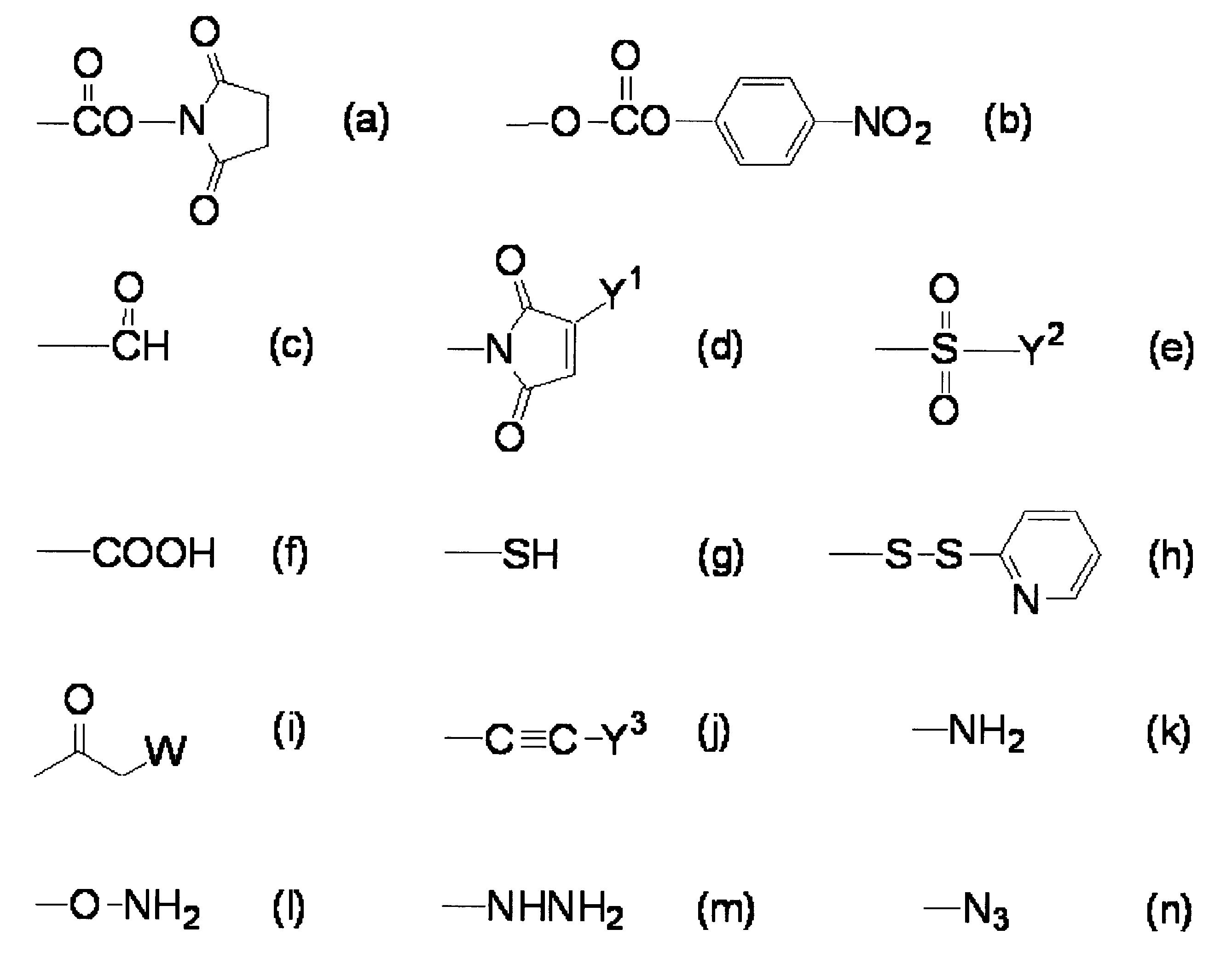 Figure JPOXMLDOC01-appb-C000013