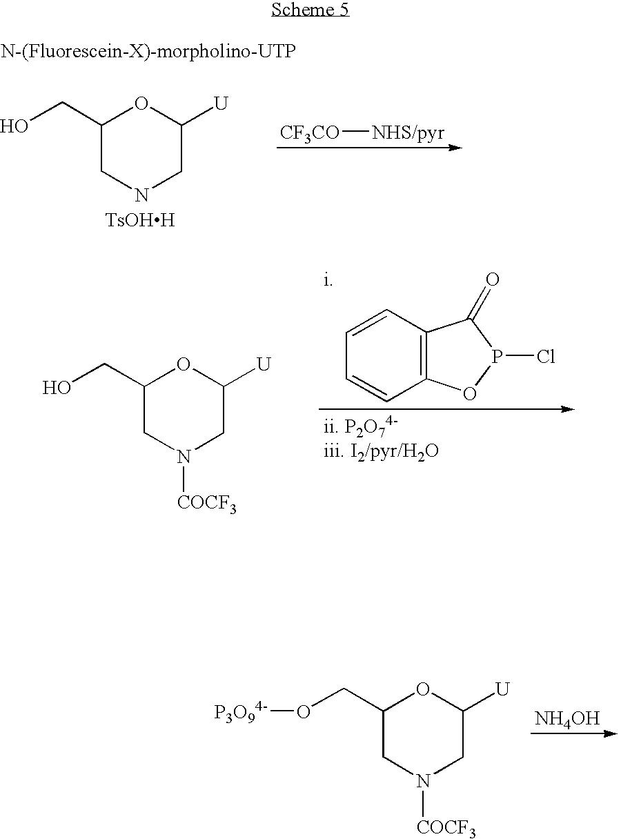 Figure US06864059-20050308-C00082