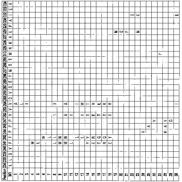 Figure 112005016313609-pct00082