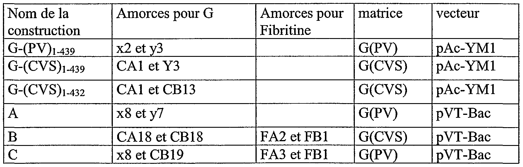 WO2004000877A2 - Peptides derived from the rabies virus