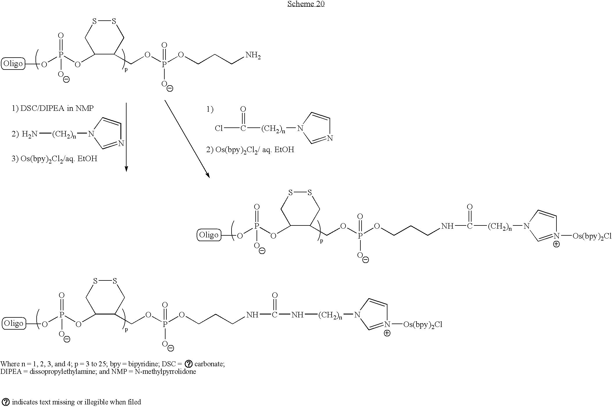 Figure US20070099211A1-20070503-C00021