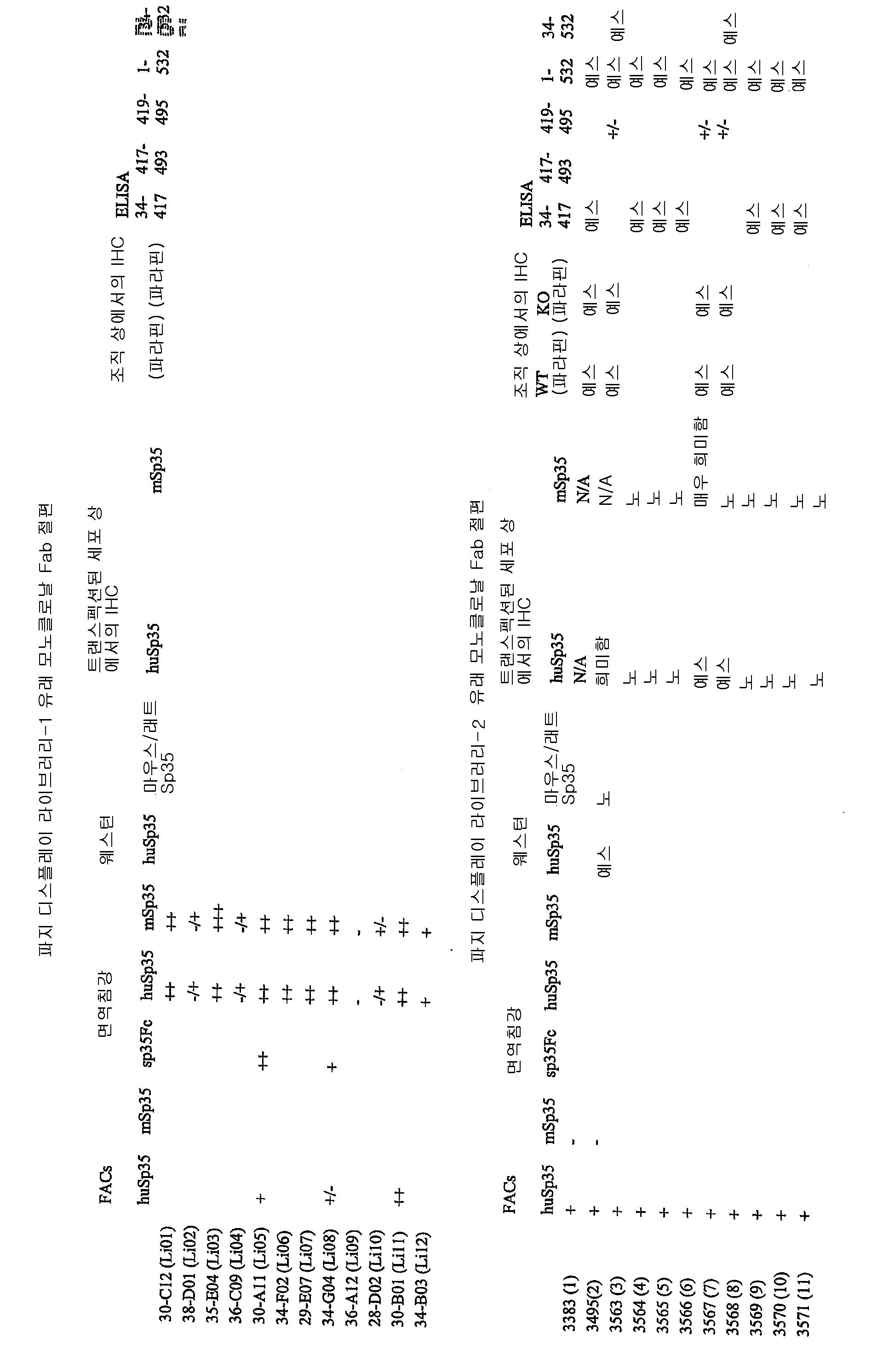 Figure 112008009625969-pct00010