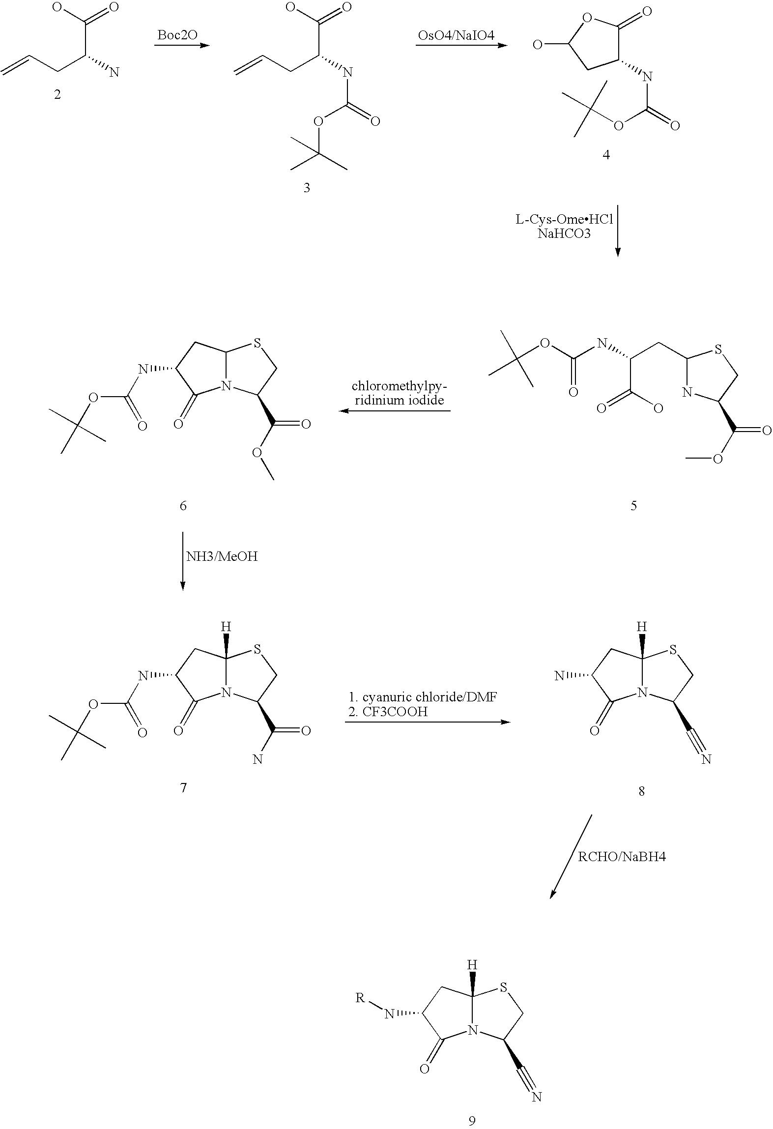 Figure US07008957-20060307-C00004