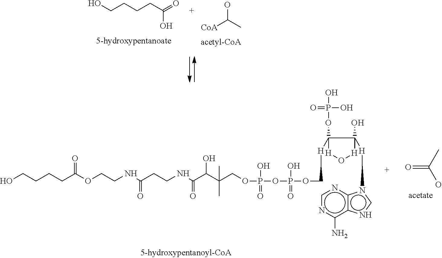 Figure US08404465-20130326-C00053