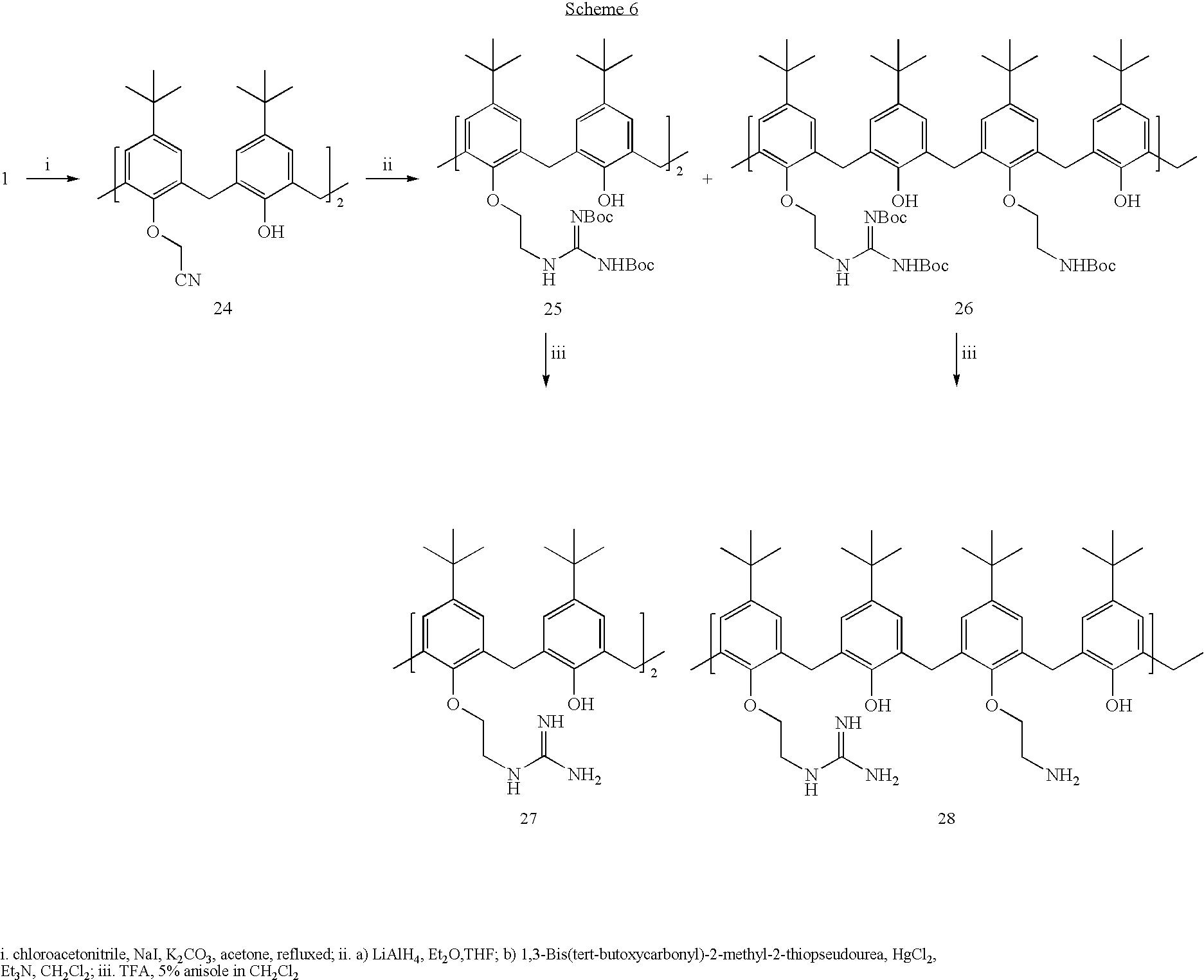 Figure US08207228-20120626-C00024