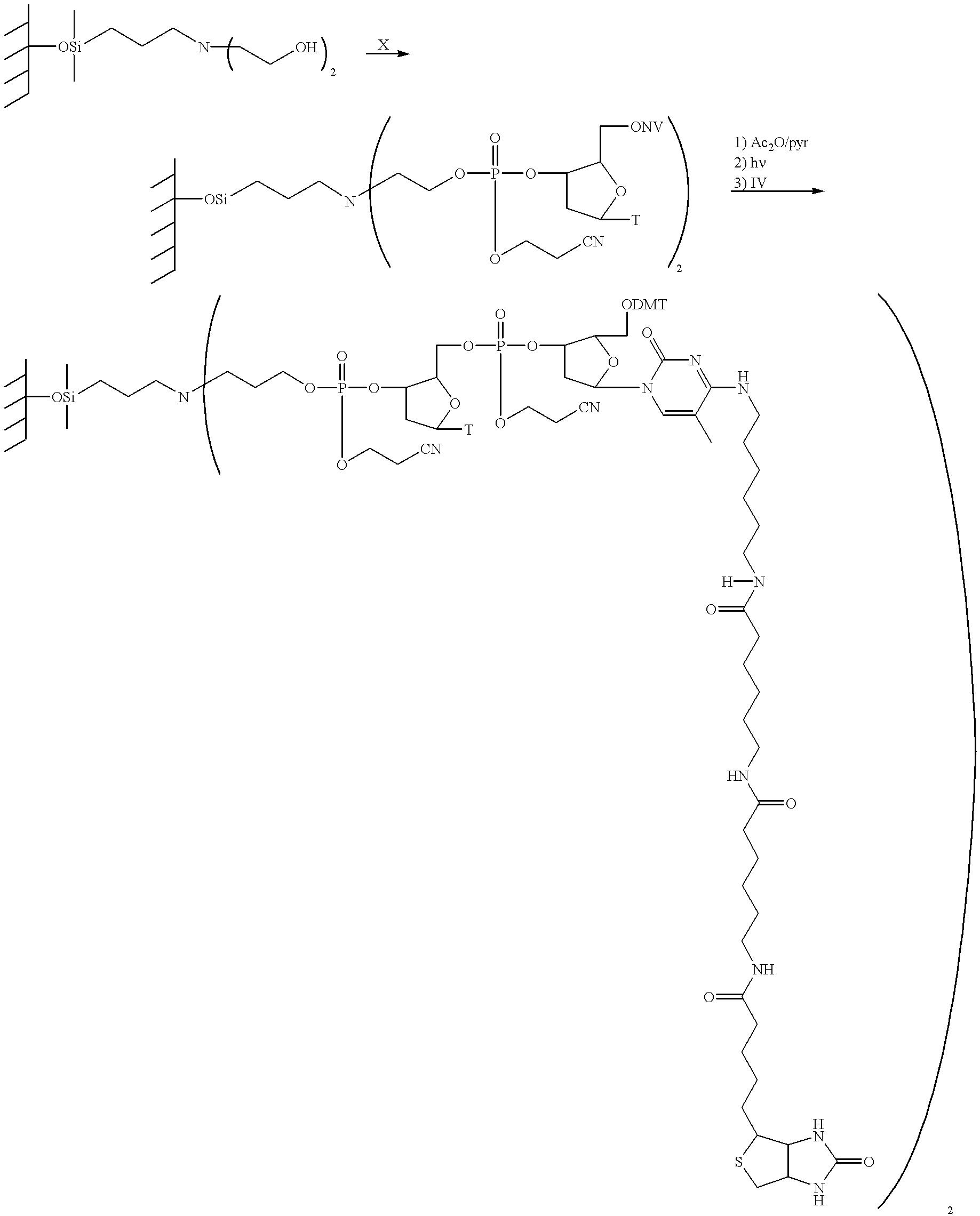 Figure US06355432-20020312-C00016
