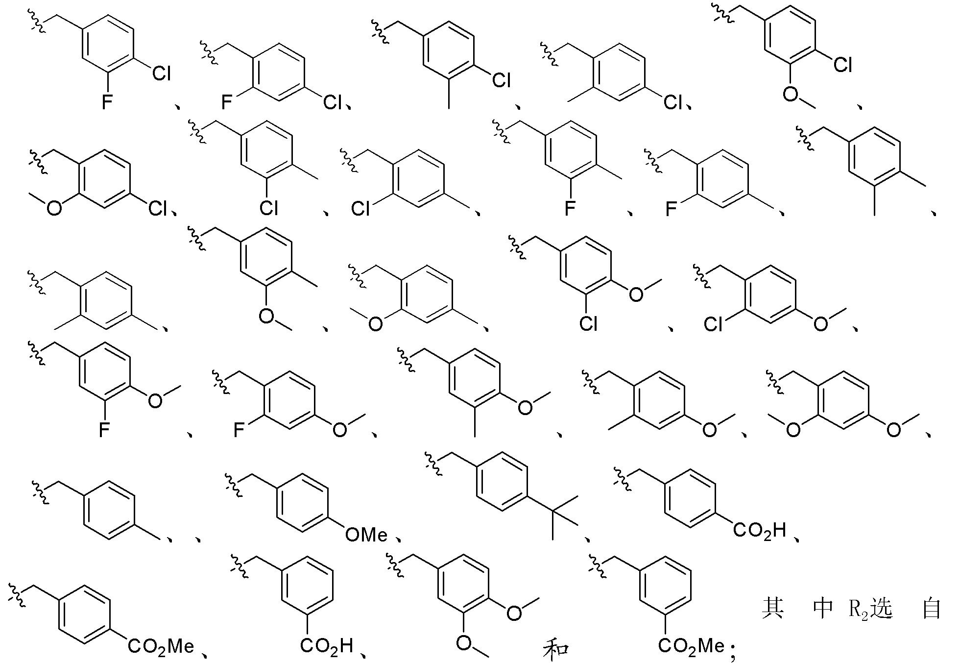 Figure CN102448458BD00153