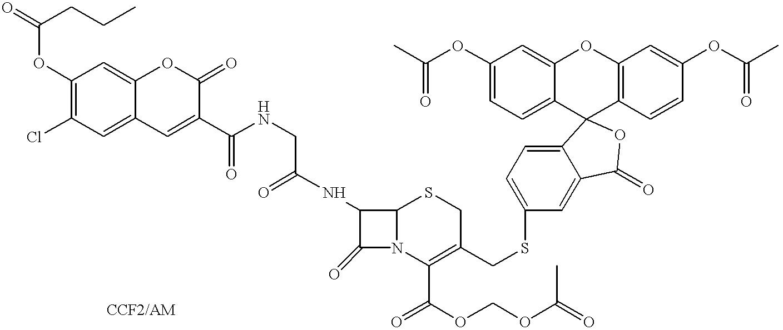 Figure US06200762-20010313-C00001
