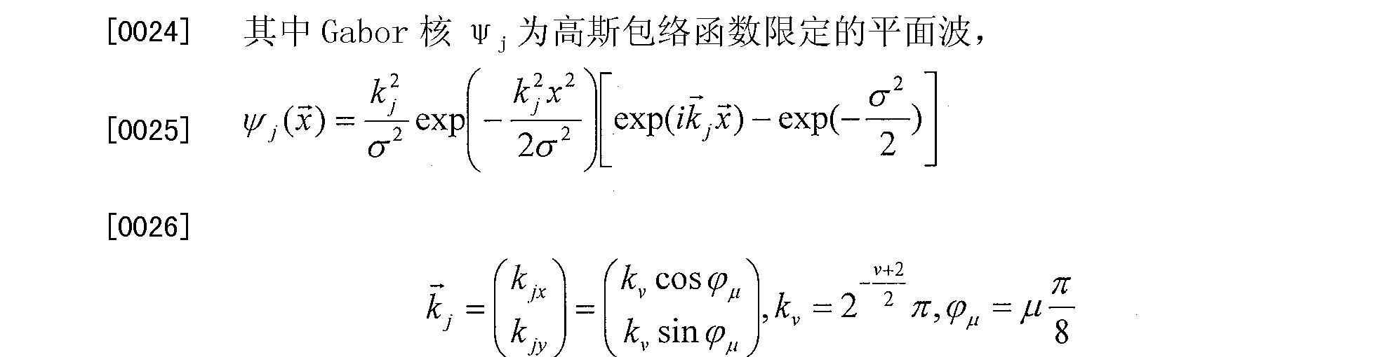 Figure CN101968846BD00082