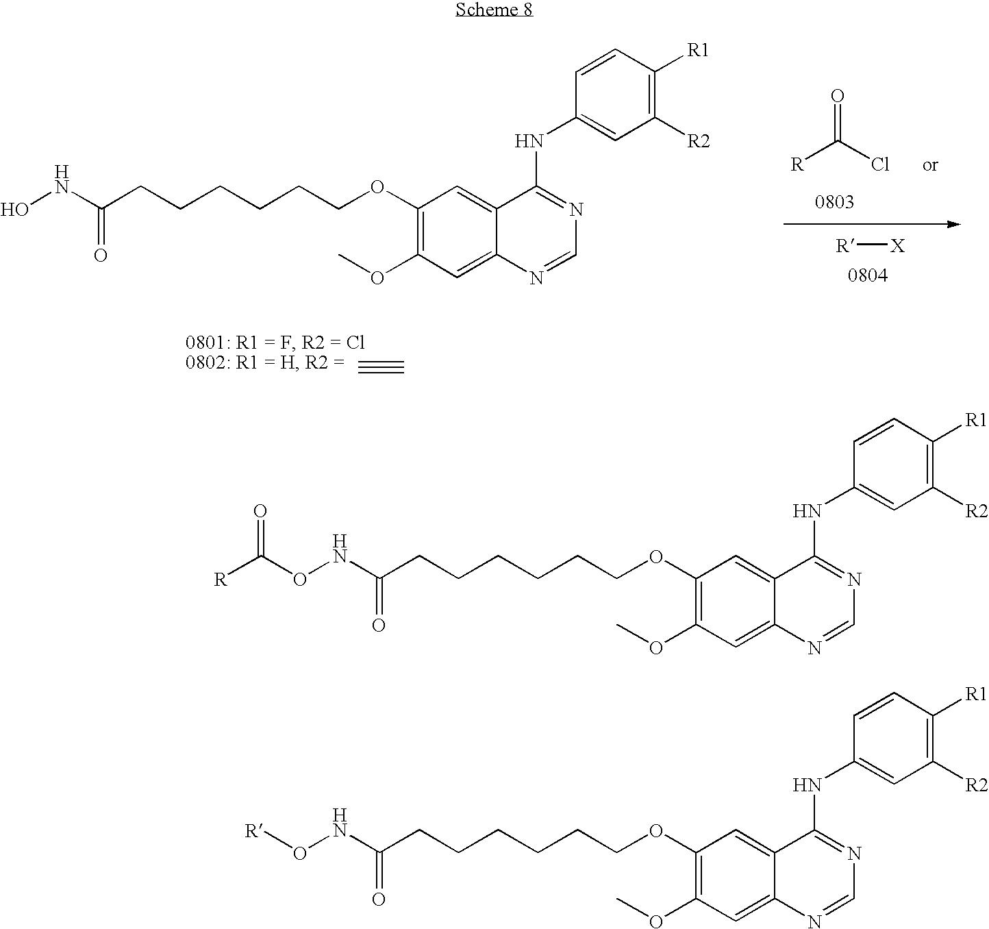 Figure US20090111772A1-20090430-C00230