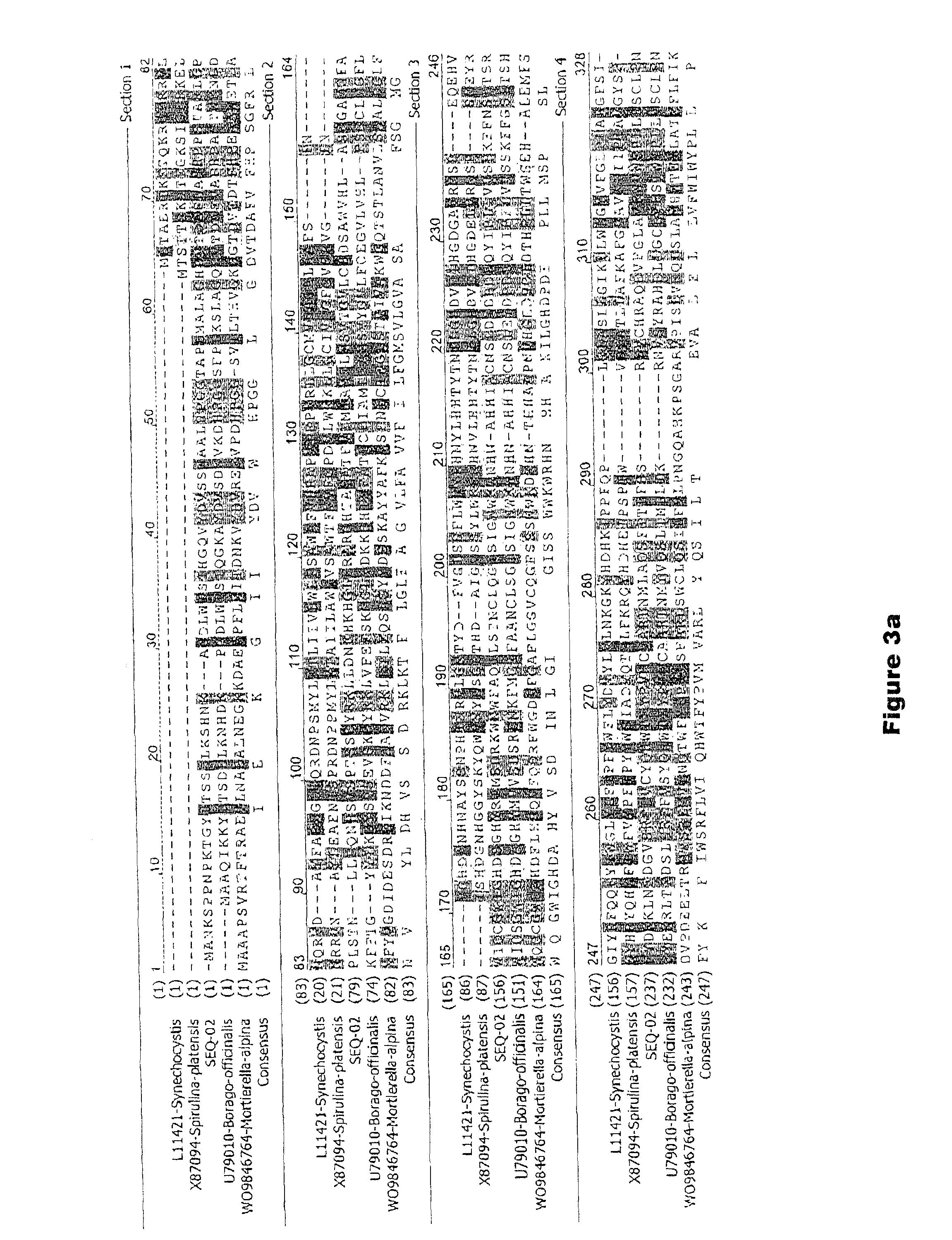 1000uF 16V GD10787 ECA1CAM102X Panasonic Kondensator