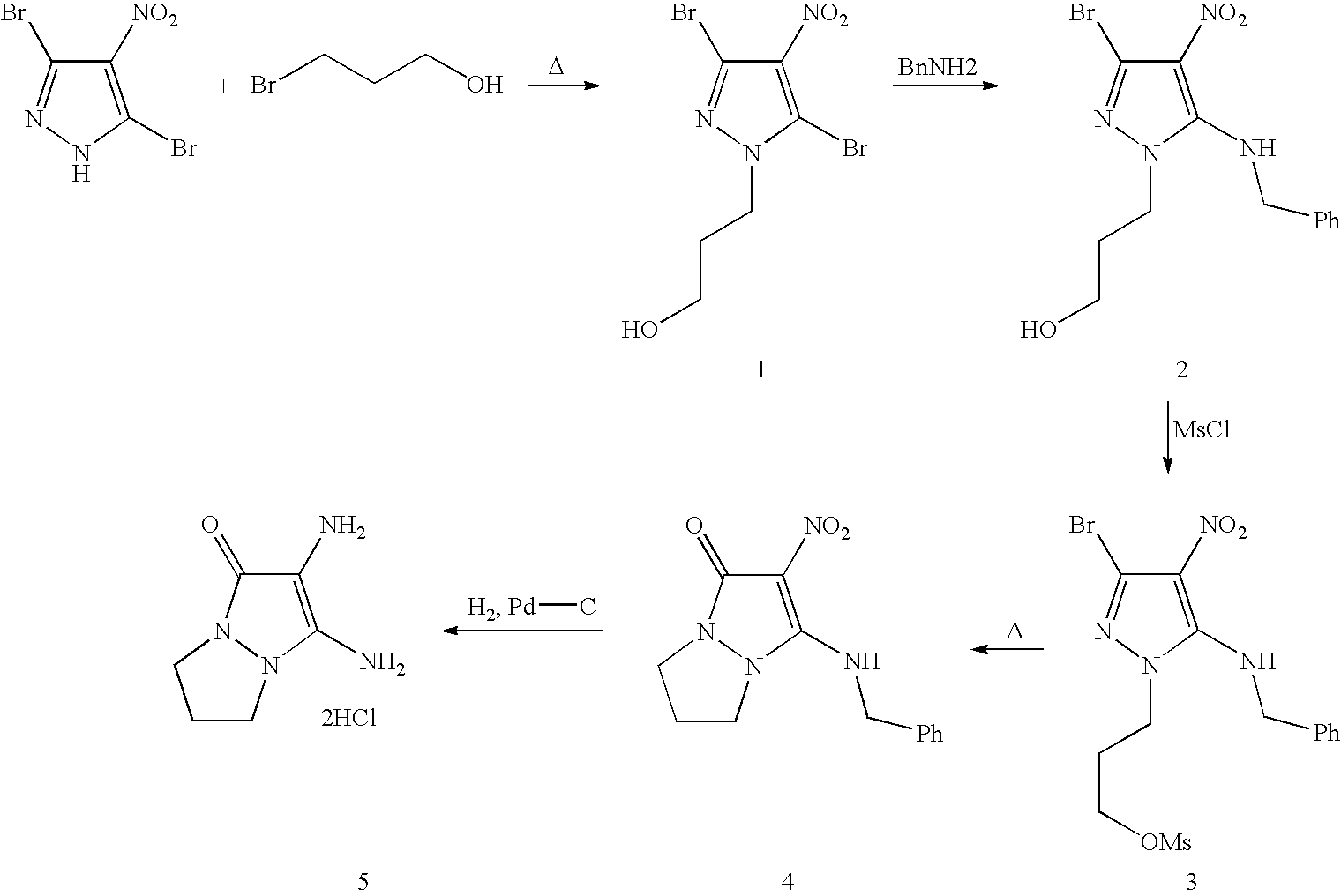Figure US07488356-20090210-C00045
