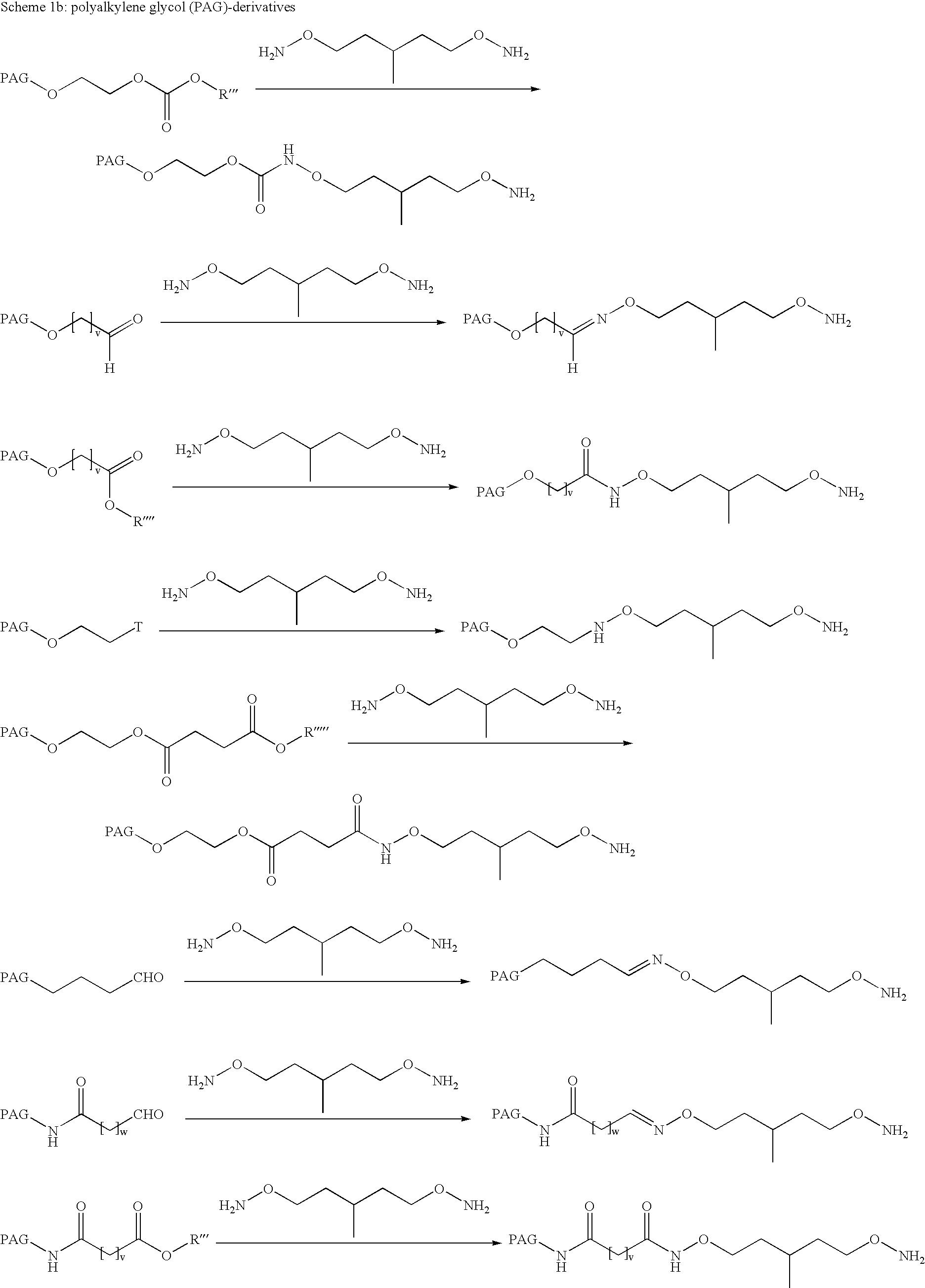 Figure US20080206182A1-20080828-C00053