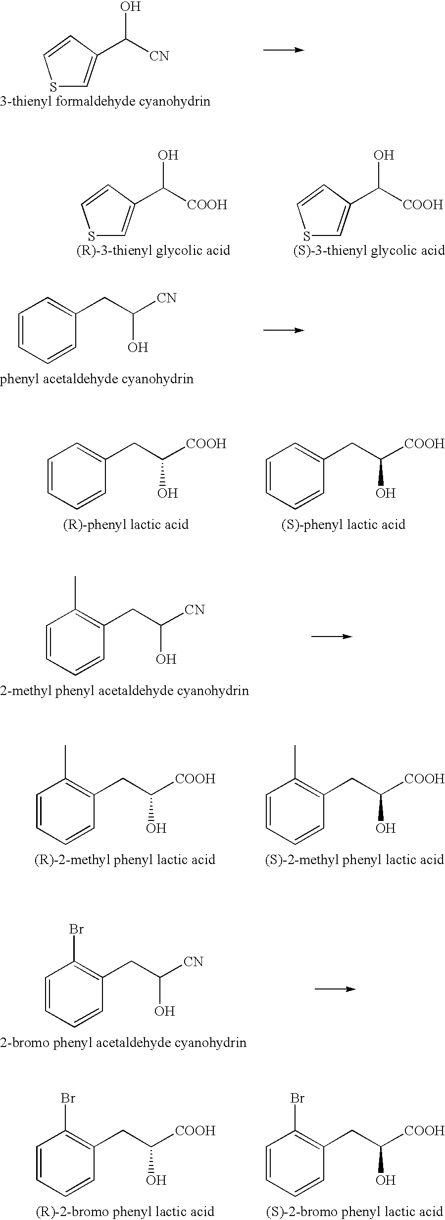 US B2 Nitrilases and methods for making and using them
