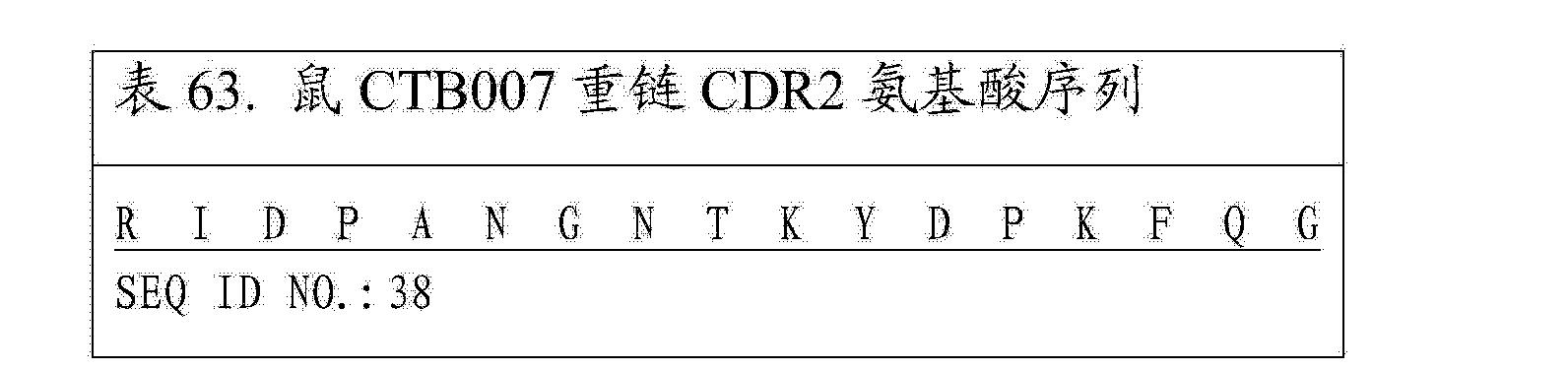 CN104402999A - Trail受体结合剂和其用途- Google Patents