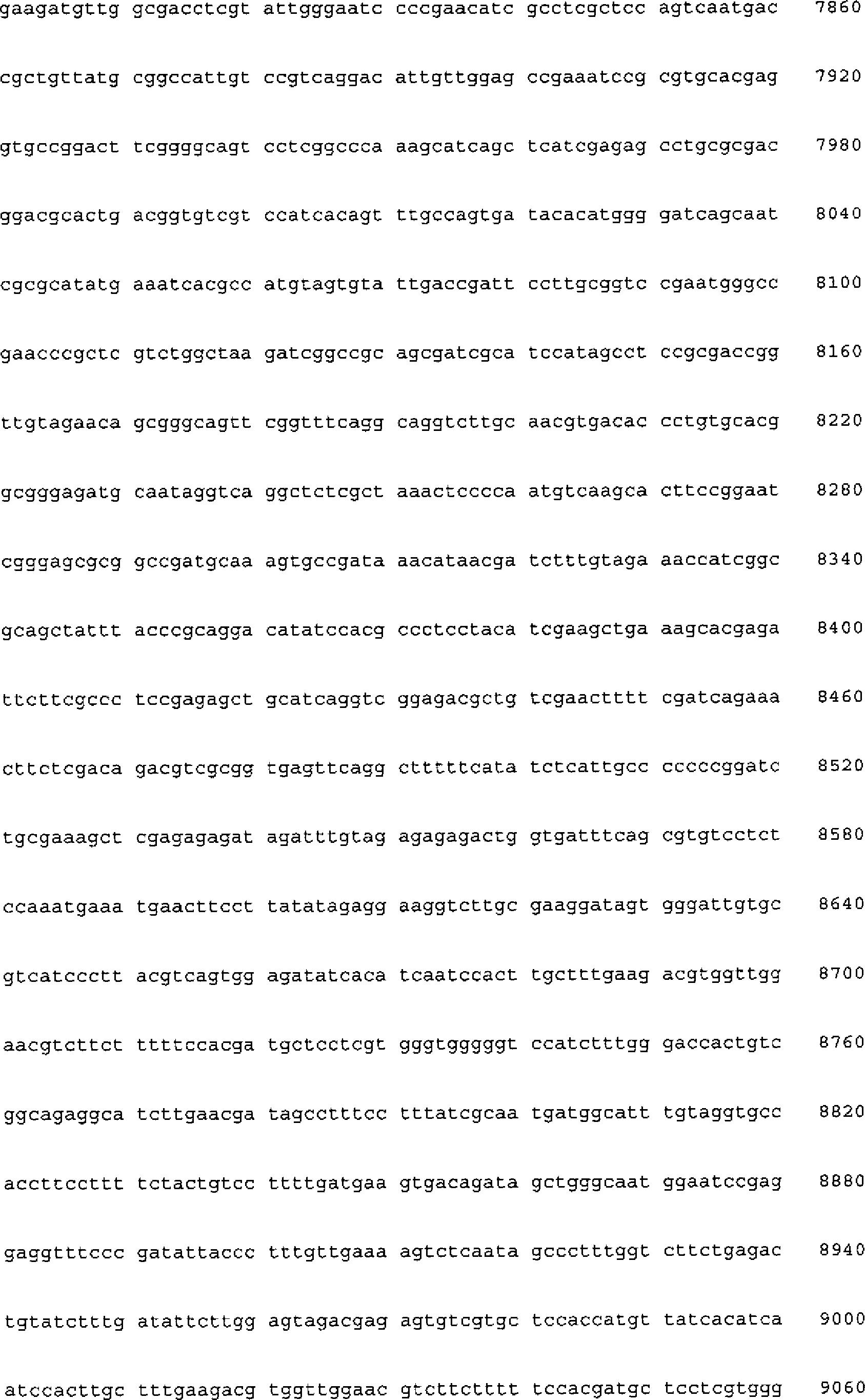 Contemporary Sequenzierung Einer Tabelle 3Klasse Photo ...