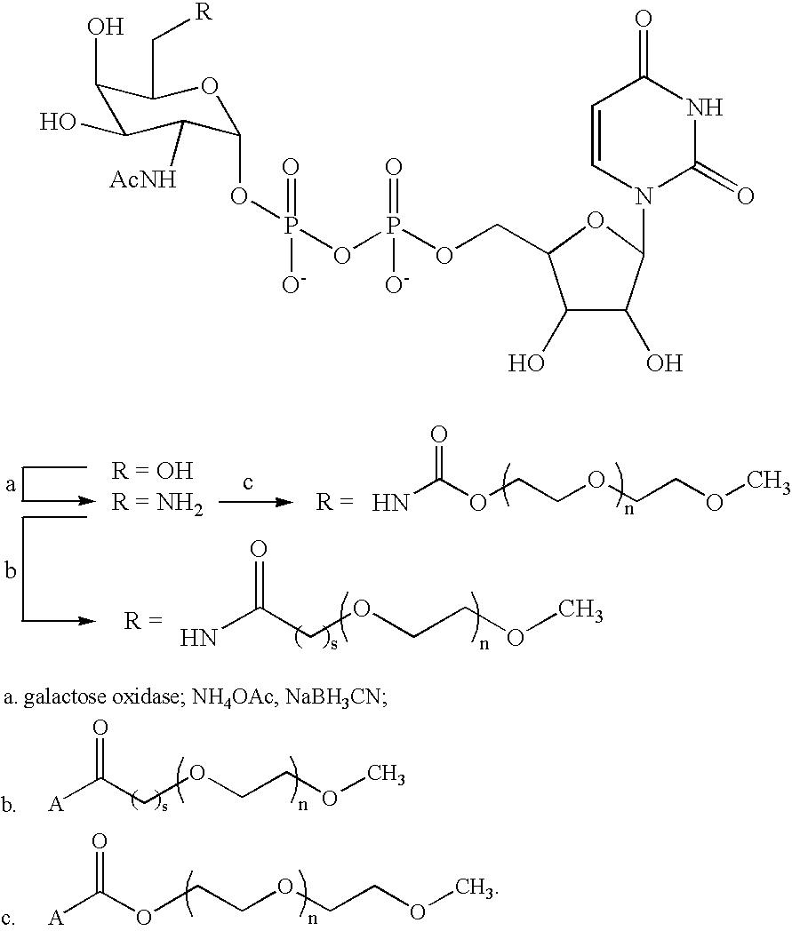 Figure US07338933-20080304-C00022