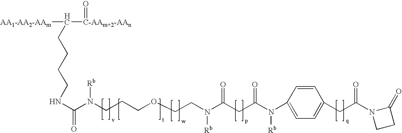 Figure US20080152660A1-20080626-C00157