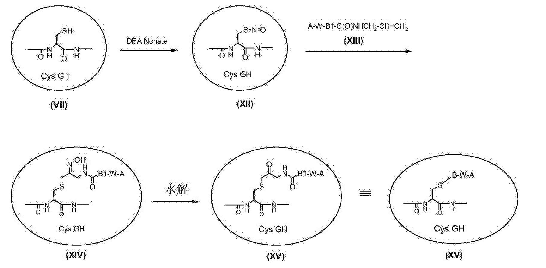Figure CN103002918BD00681