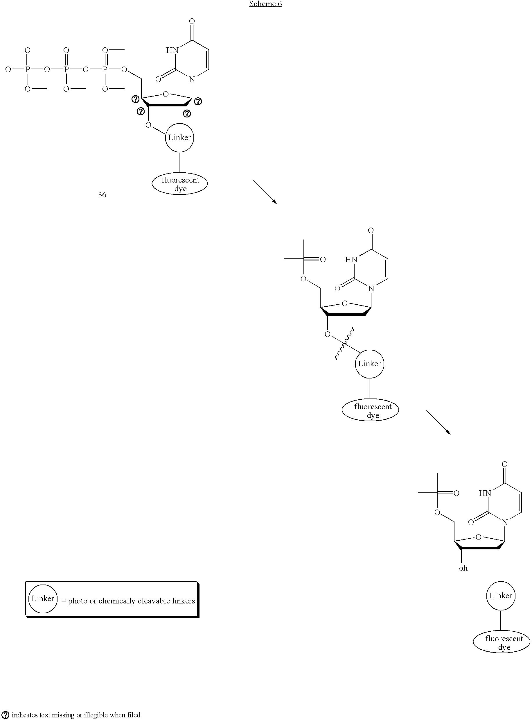 Figure US20050170367A1-20050804-C00011