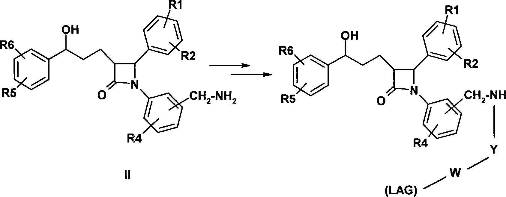 DE102010015123A1 - New benzylamidic diphenylazetidinone compounds ...