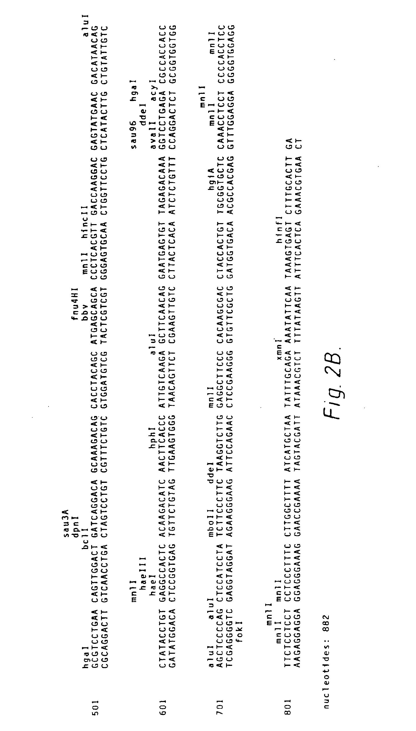 Ep0125023b2 Recombinant Immunoglobulin Preparations Google Patents Westfieldworld Kitcar Support Site Westfield Wiring Diagram