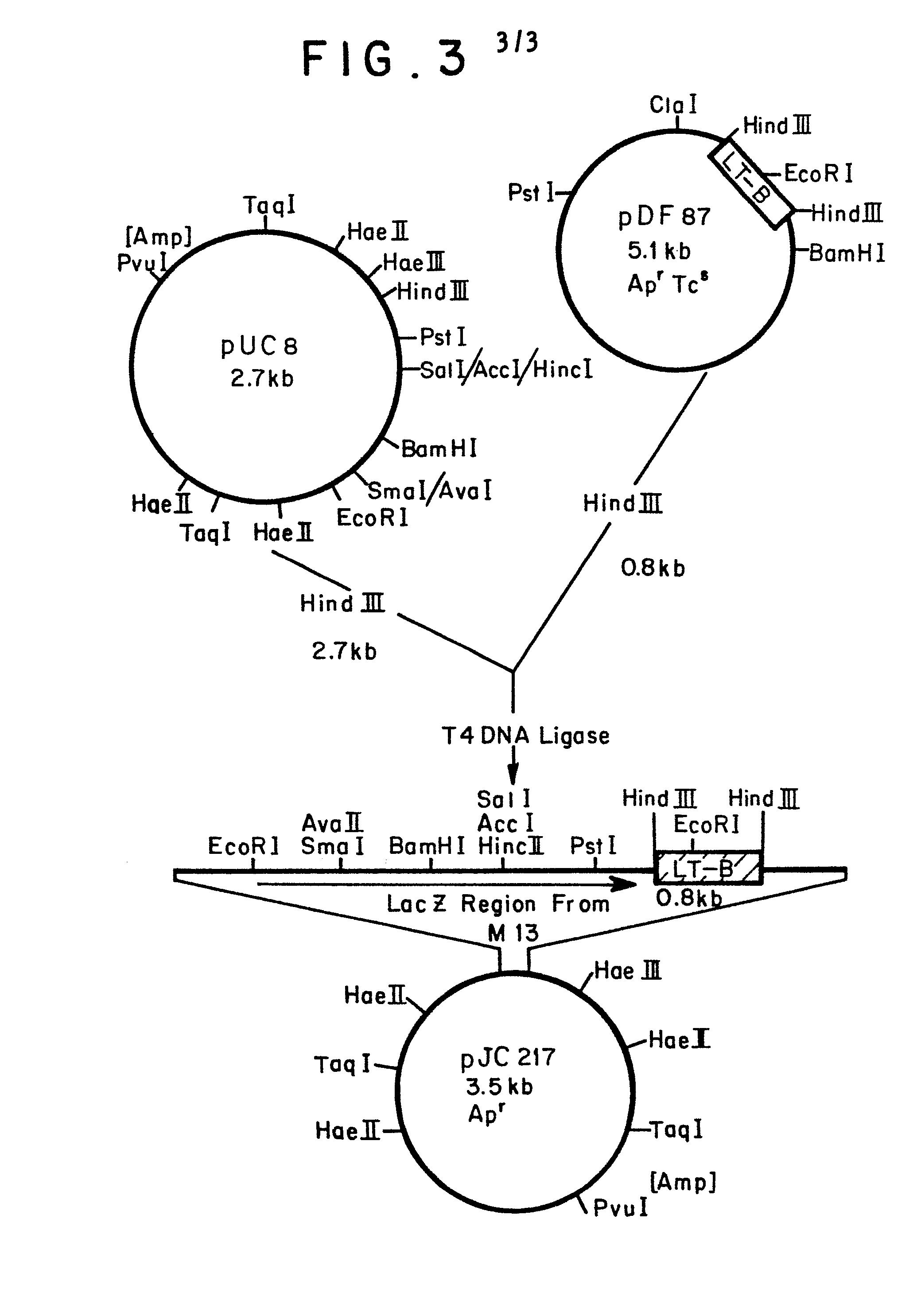 Gene Patenting - Essay Example