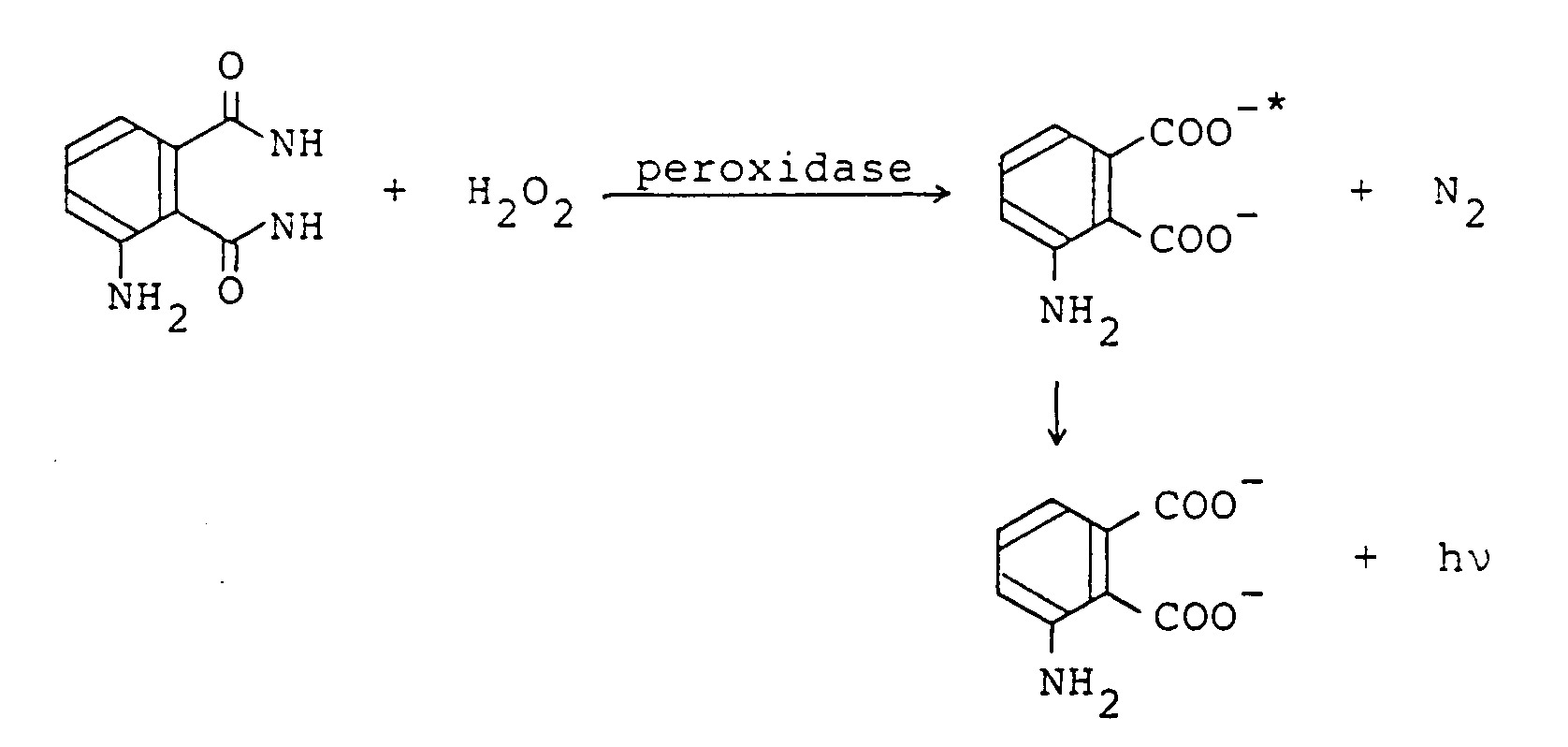 the reaction between hydrogen peroxide The redox half-reaction for hydrogen oxidation is relatively simple and is shown   bias for the production of water over hydrogen peroxide when h2 and o2 are.