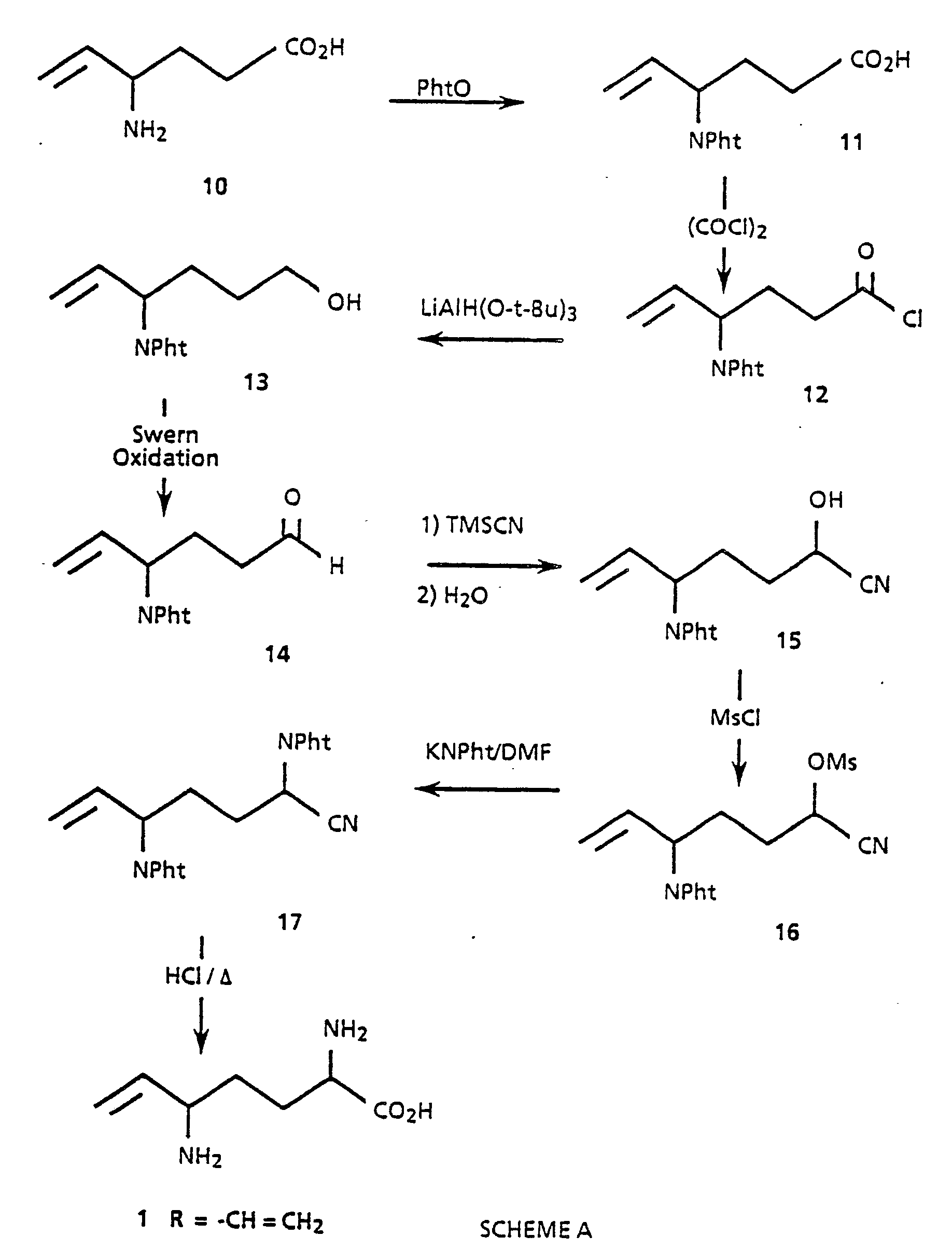 Patent Ep0326766a1 5 Substituted Ornithine Derivatives