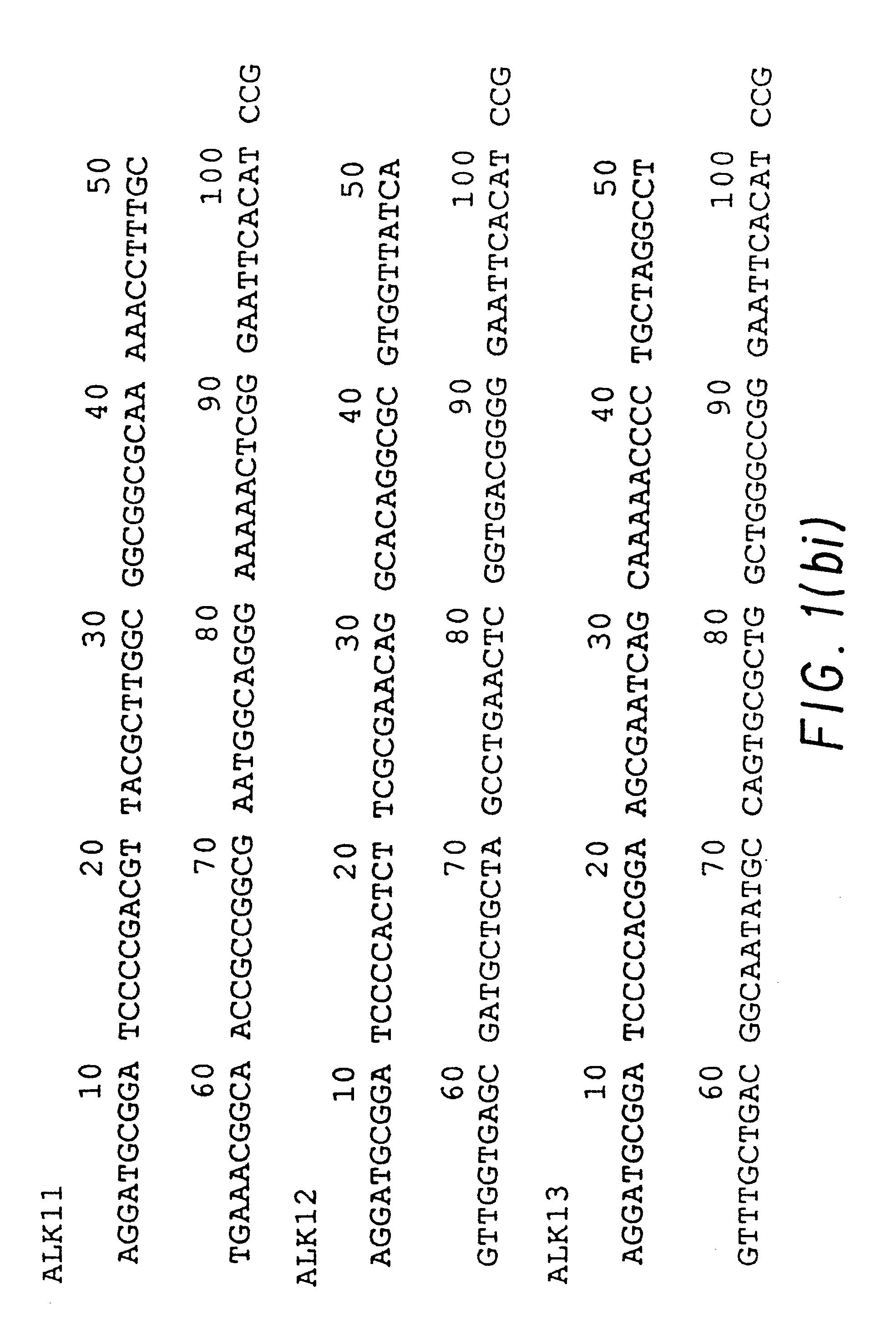 Stillende alkalische Phosphatase
