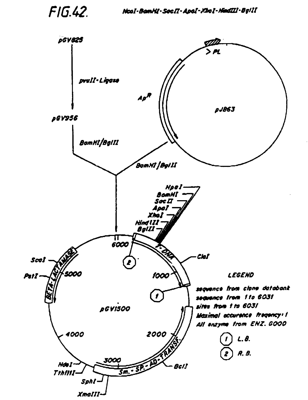 patent ep0451878b2