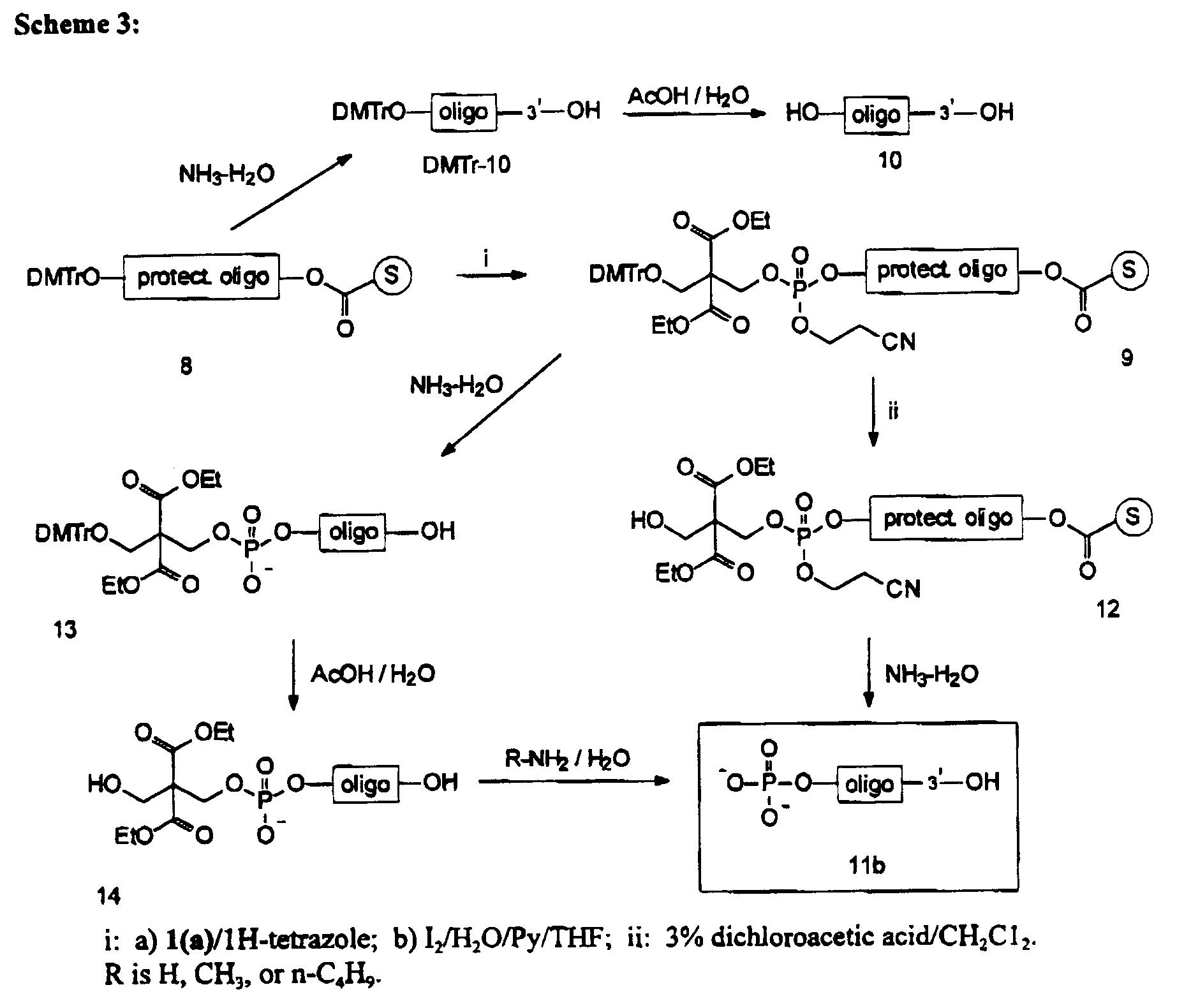 chemical synthesis of oligonucleotides pdf