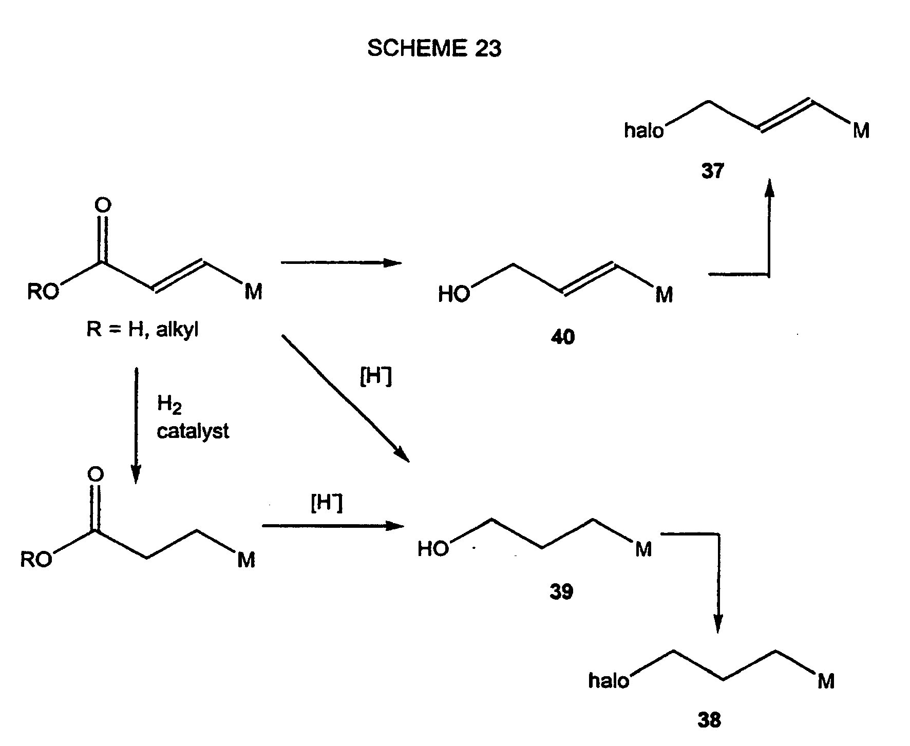 bromination of trans cinnamic acid essay Organic chemistry mcqs: previous niper paper : 2008-2012 cis and trans cinnamic acid are: all india online essay contest for pharmacy studen.