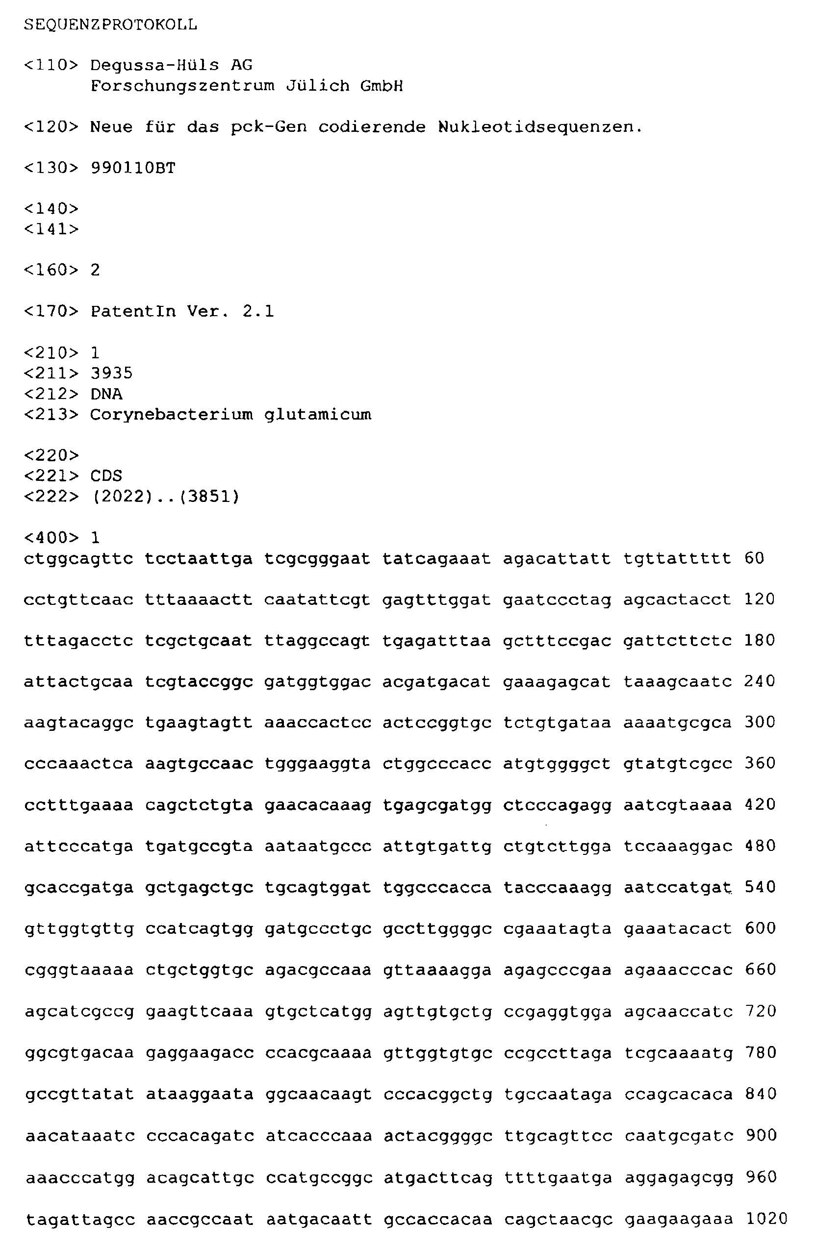 Schön Kern Java Lebenslauf Format Für Erstsemester Fotos - Beispiel ...