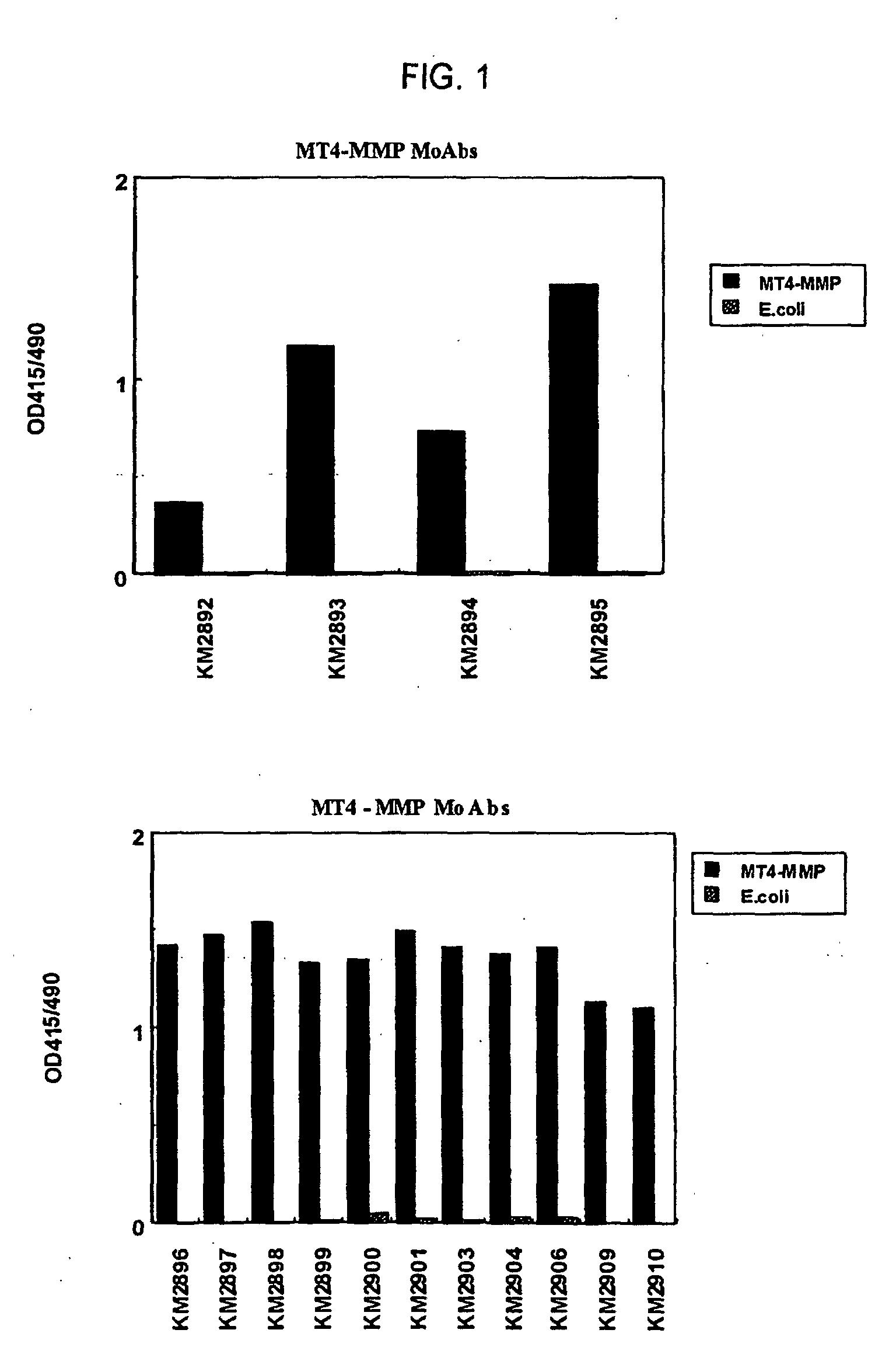 Structure cristalline du domaine de liaison aux récepteurs du coronavirus respiratoire NL63 complexé avec son récepteur humain