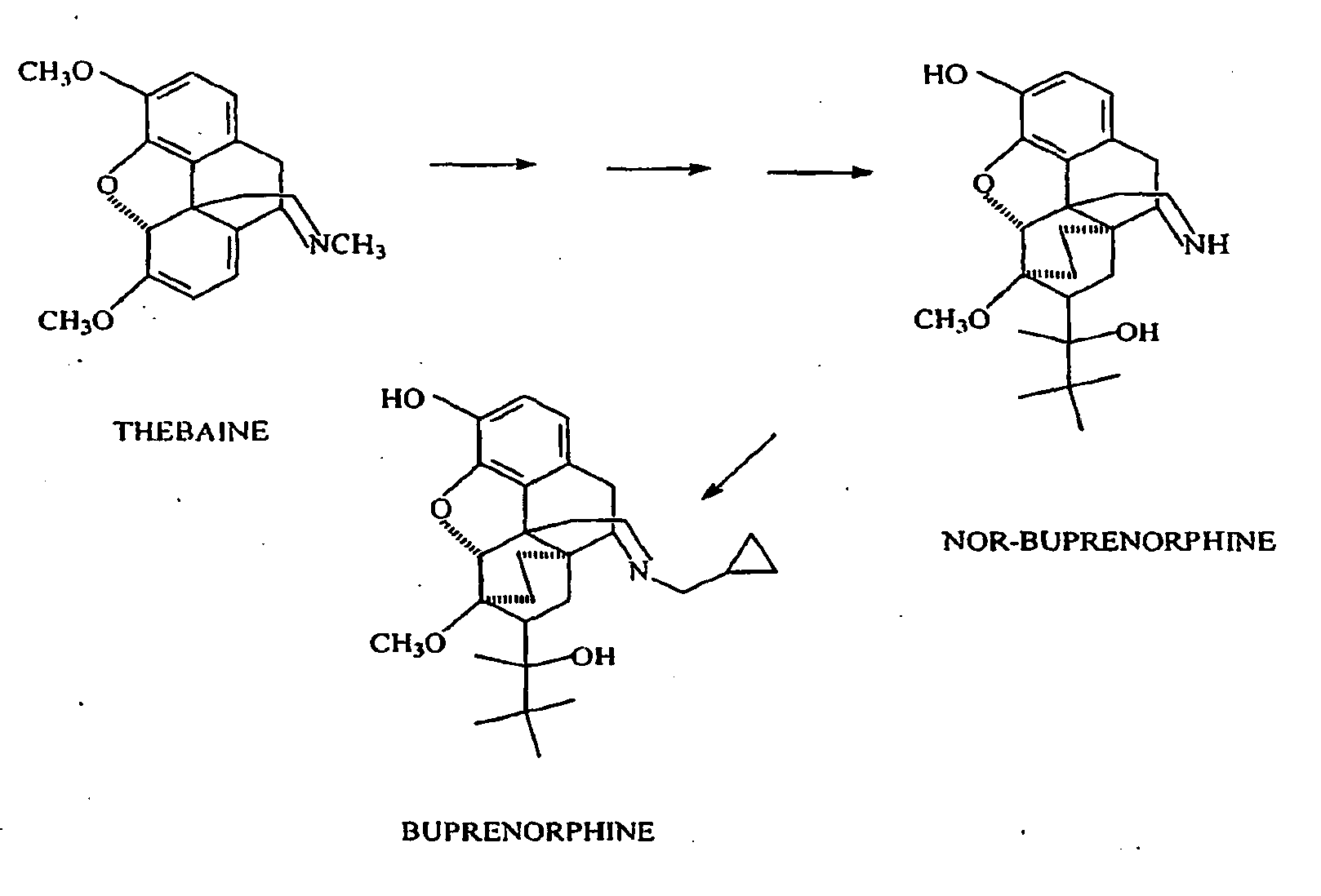 Buprenorphine 171 New Drug Approvals