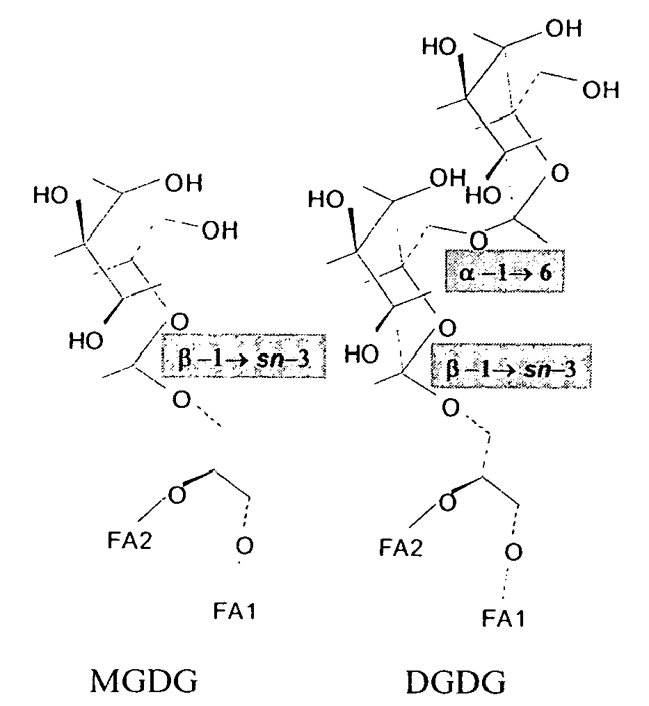Patent EP1997381A1 - Use of a compound having a ...  Patent EP199738...