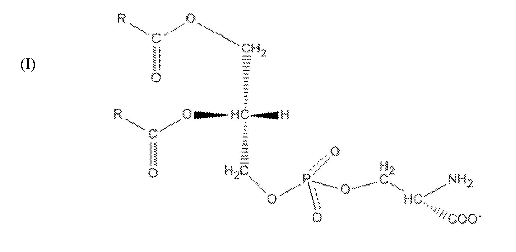 Triglyceride Molecule Structure ... Molecule Structure...