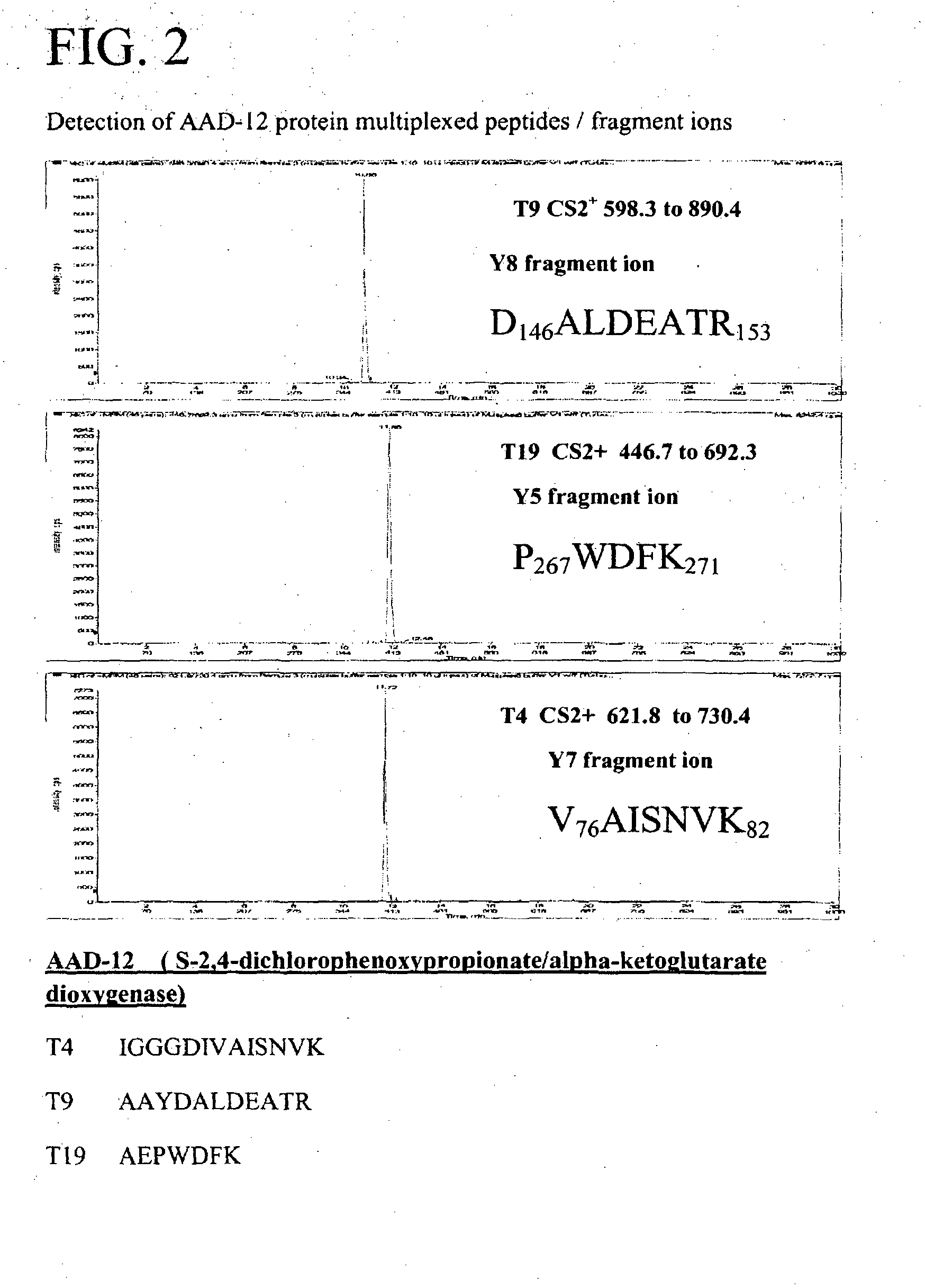 Electron ionization fragmentation asexual reproduction