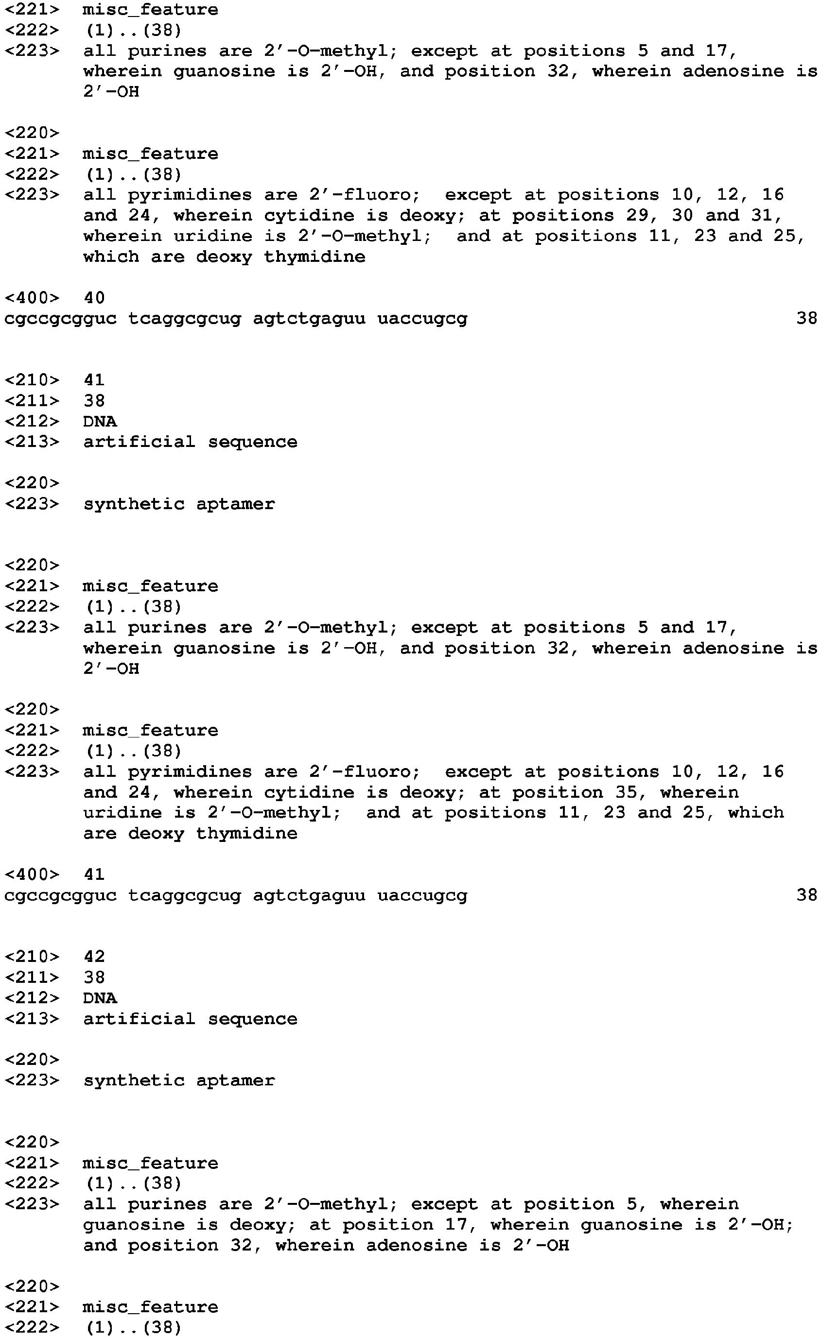 latin english translation