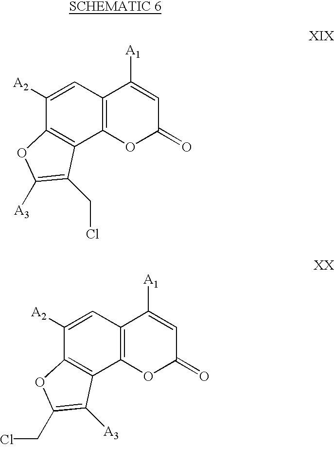 Figure US20020192632A1-20021219-C00008