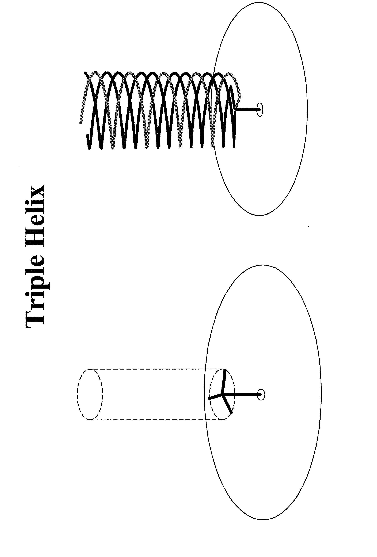 Figure US20030046042A1-20030306-P00110