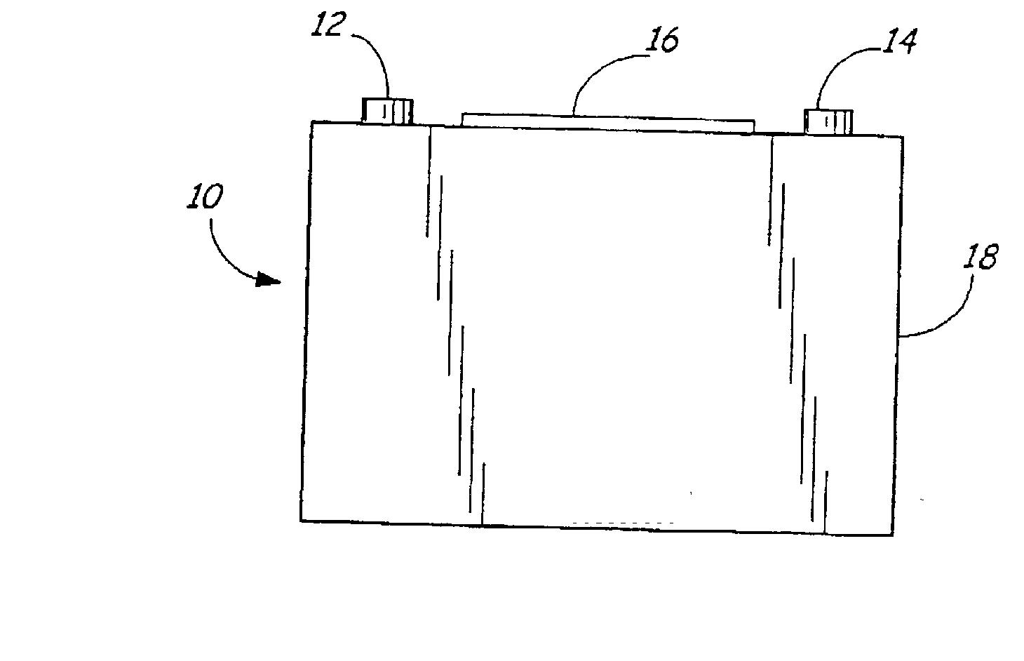 patent us20030078743 - battery test module